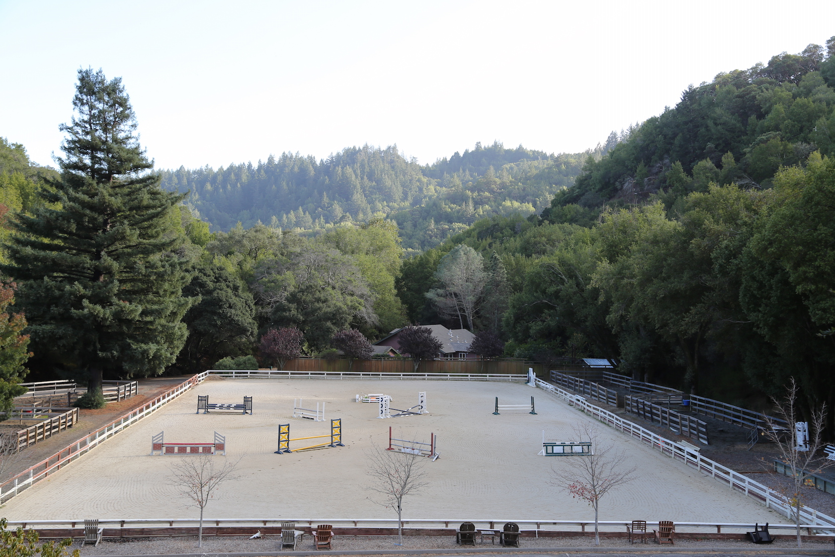 outdoor arena large.jpeg