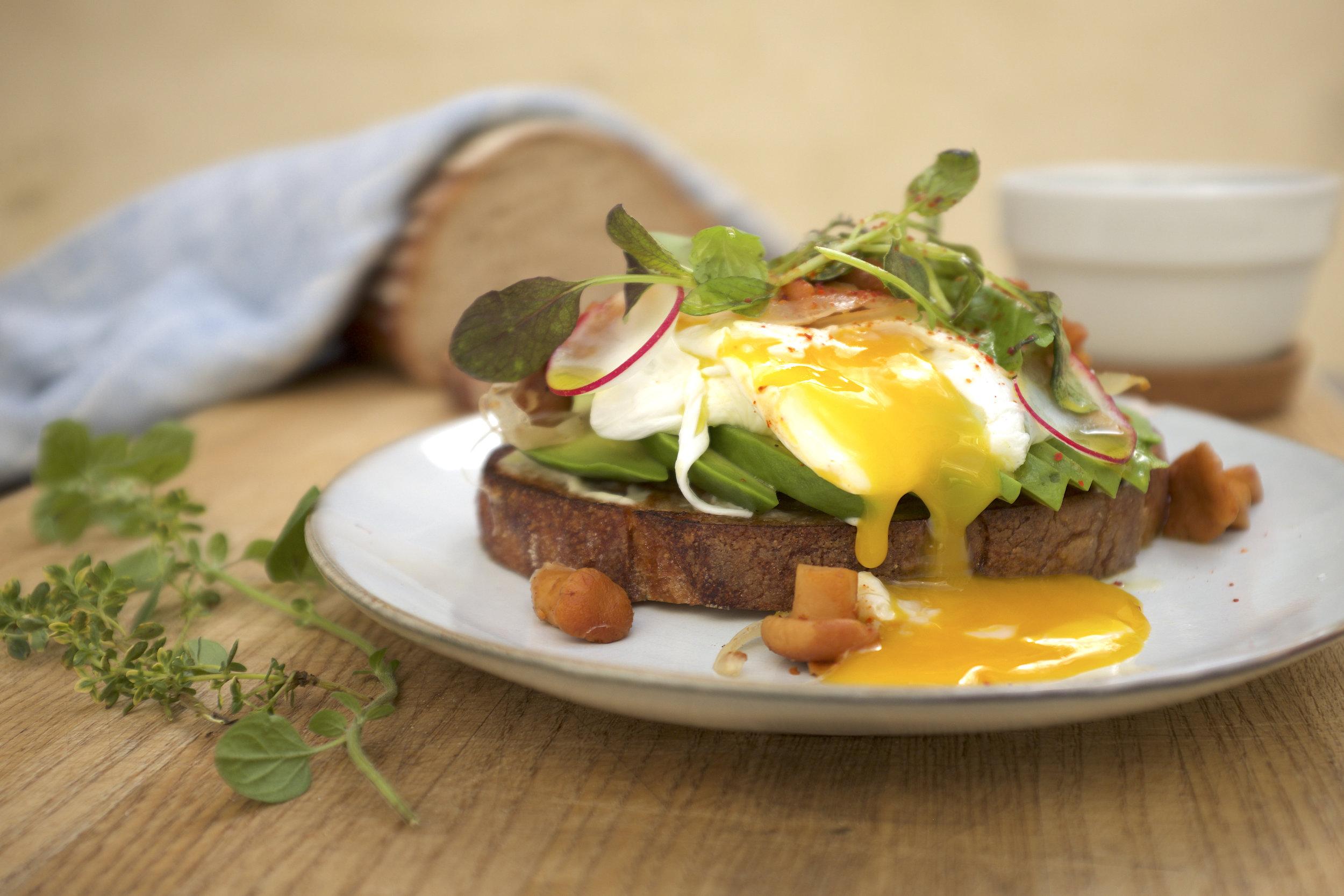 Avocado toast Poached Egg hyvä.jpg