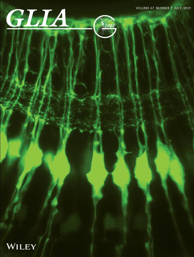 Glia Cover
