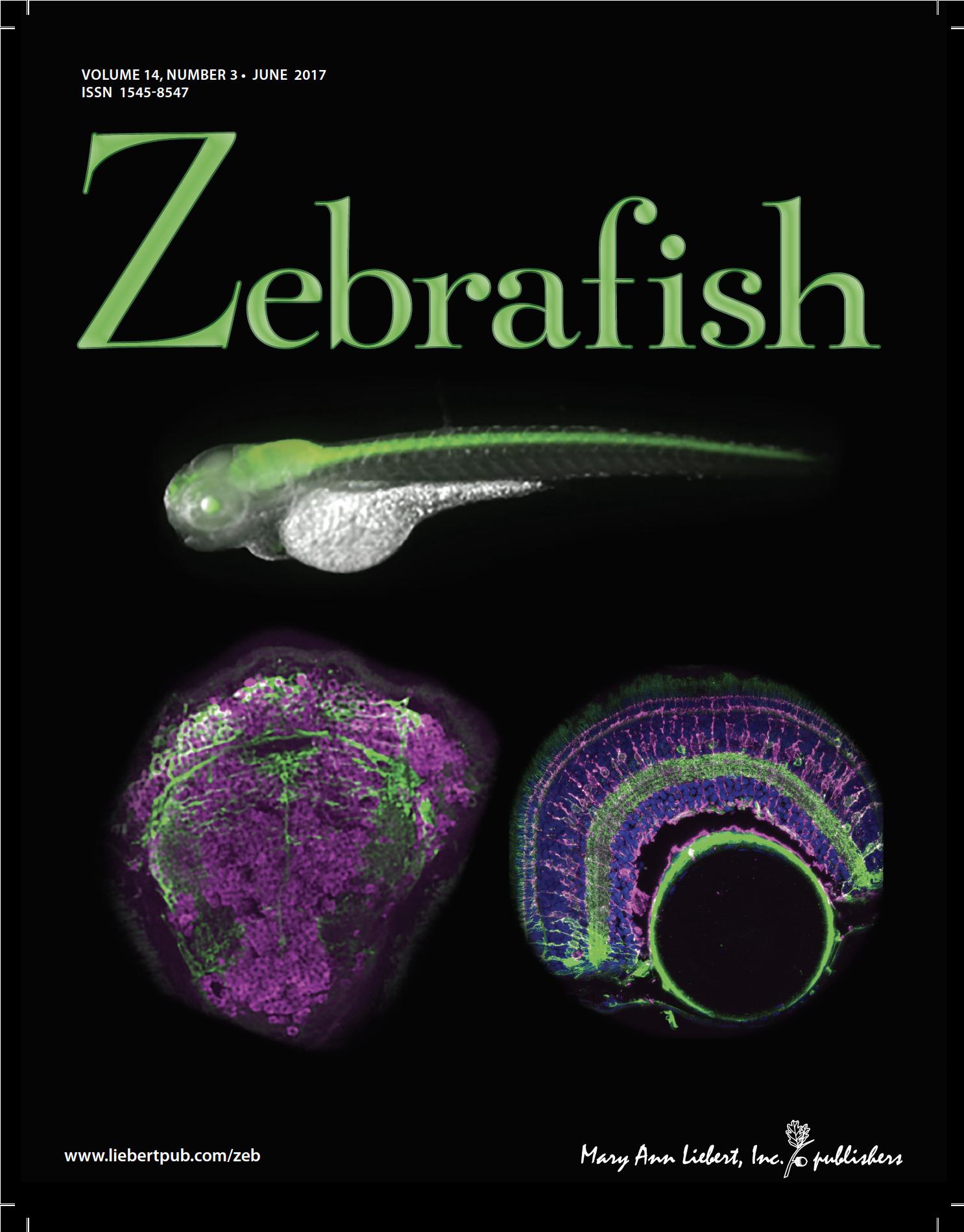 Zebrafish cover