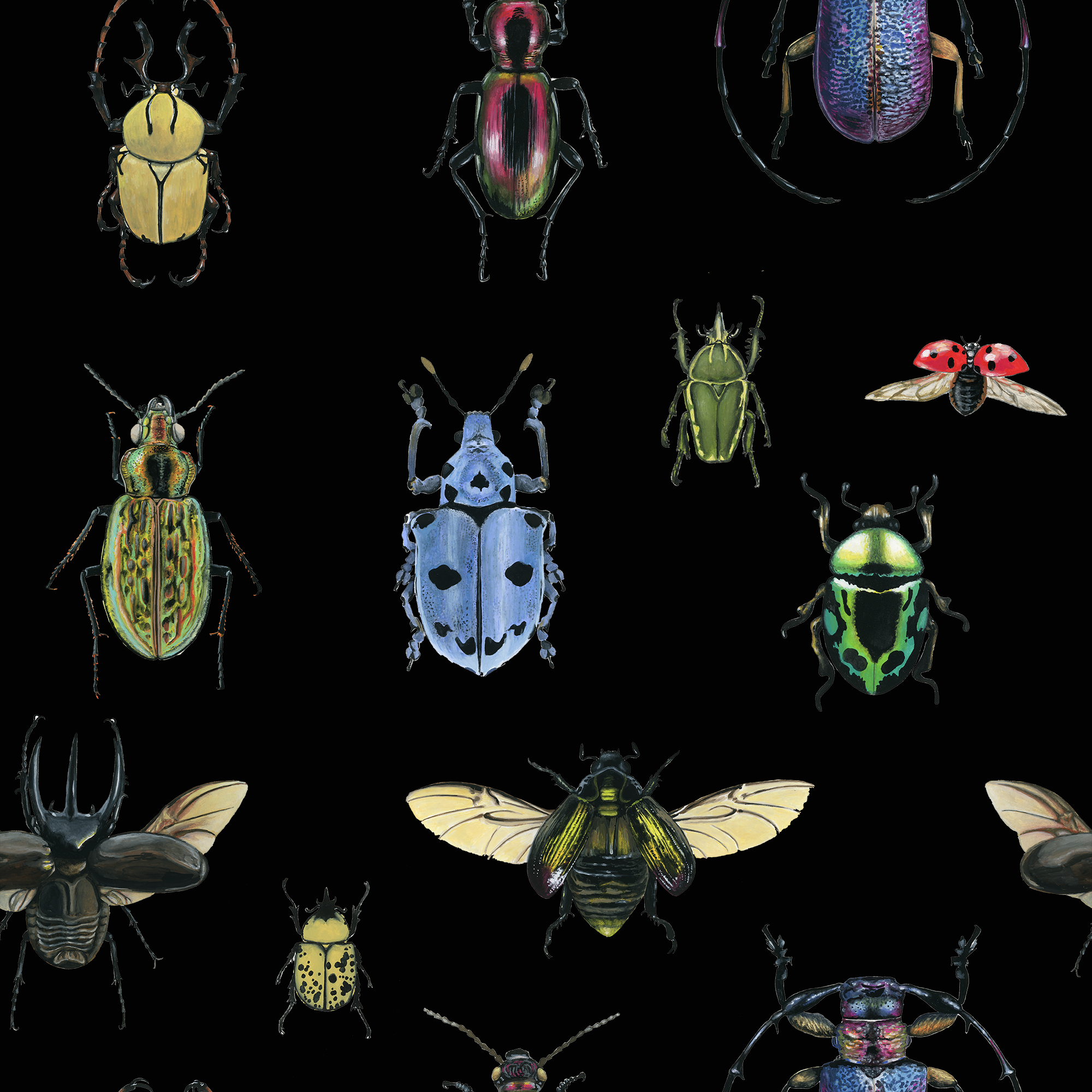 Beetles wallpaper black.png
