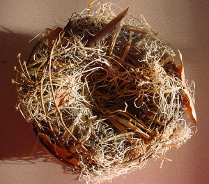 Empathy art sample nest, April 2005