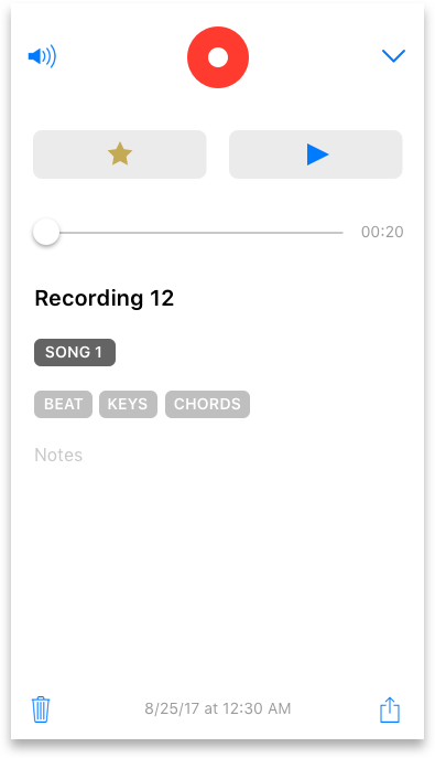 iPhone 7 - recording with tags n project v2 Copy.png
