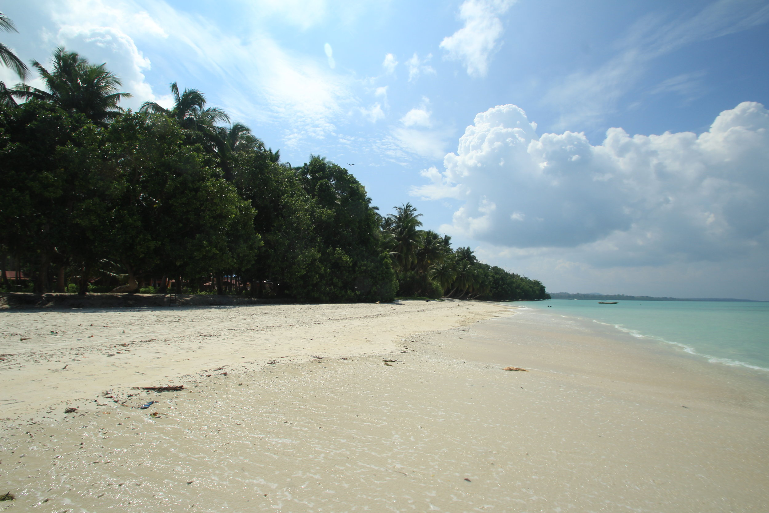 Shoreline from Wild Orchid resort
