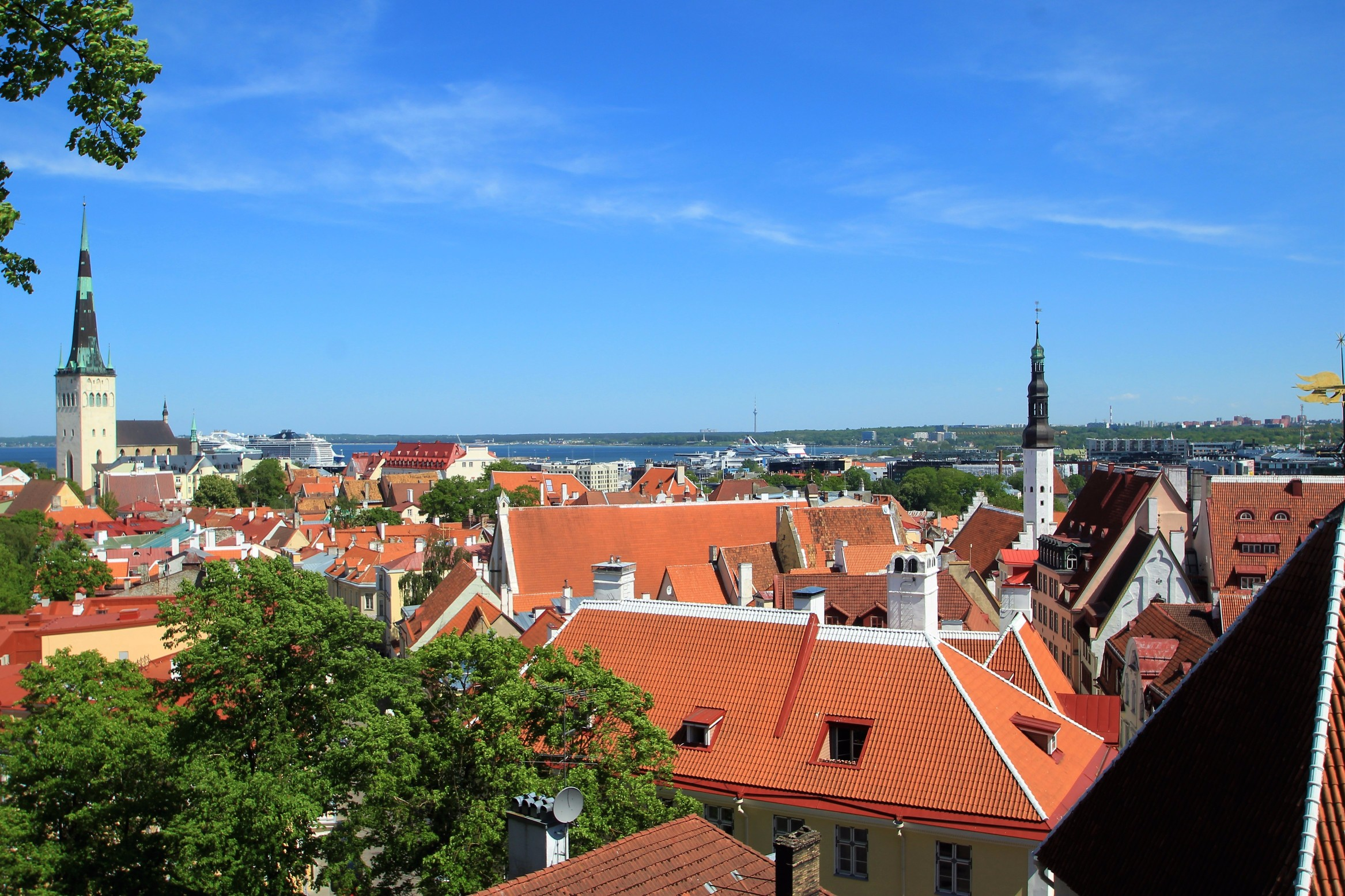 View of Old Town & St. Olafs
