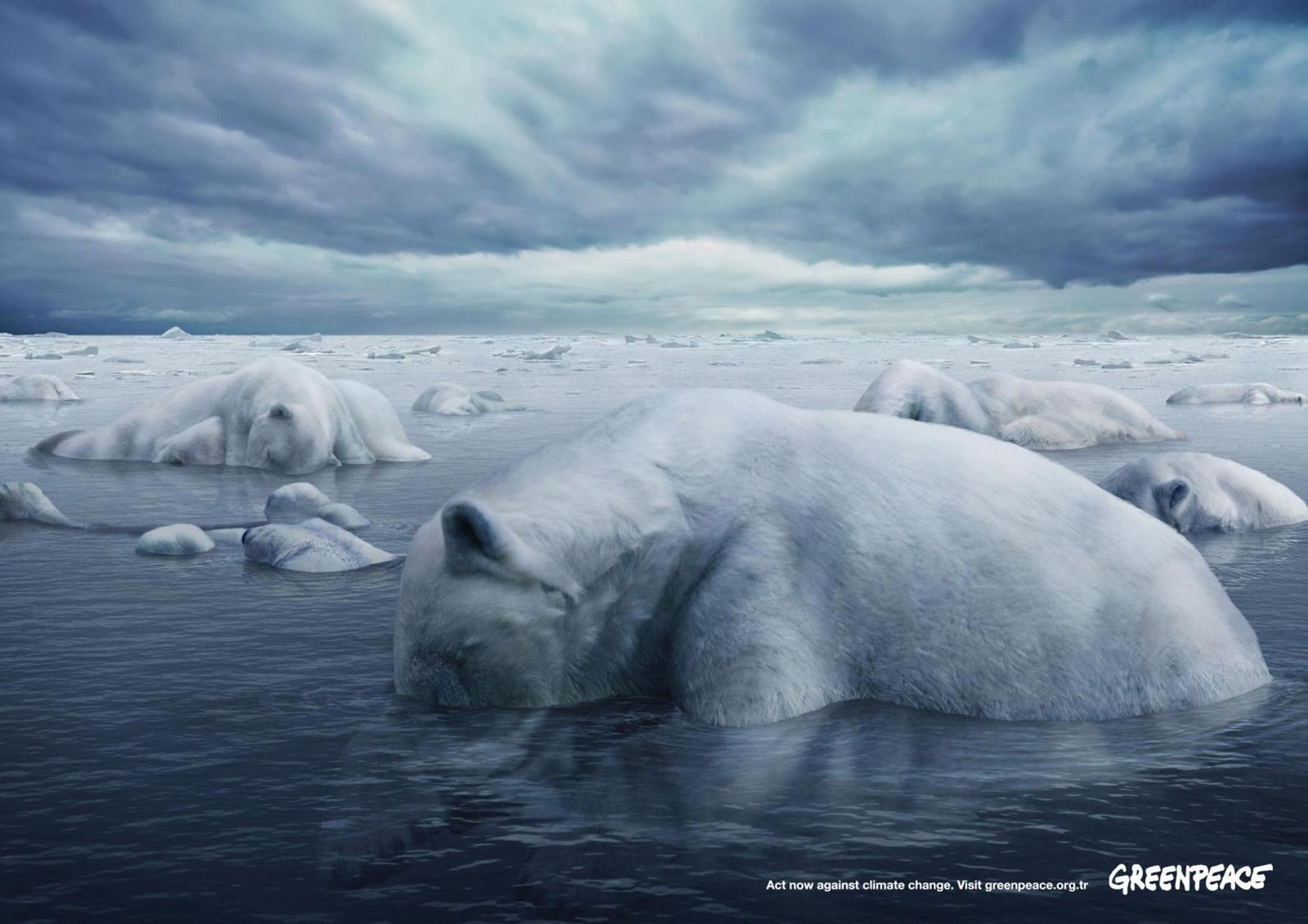 greenpeace-polar-bears1.jpg