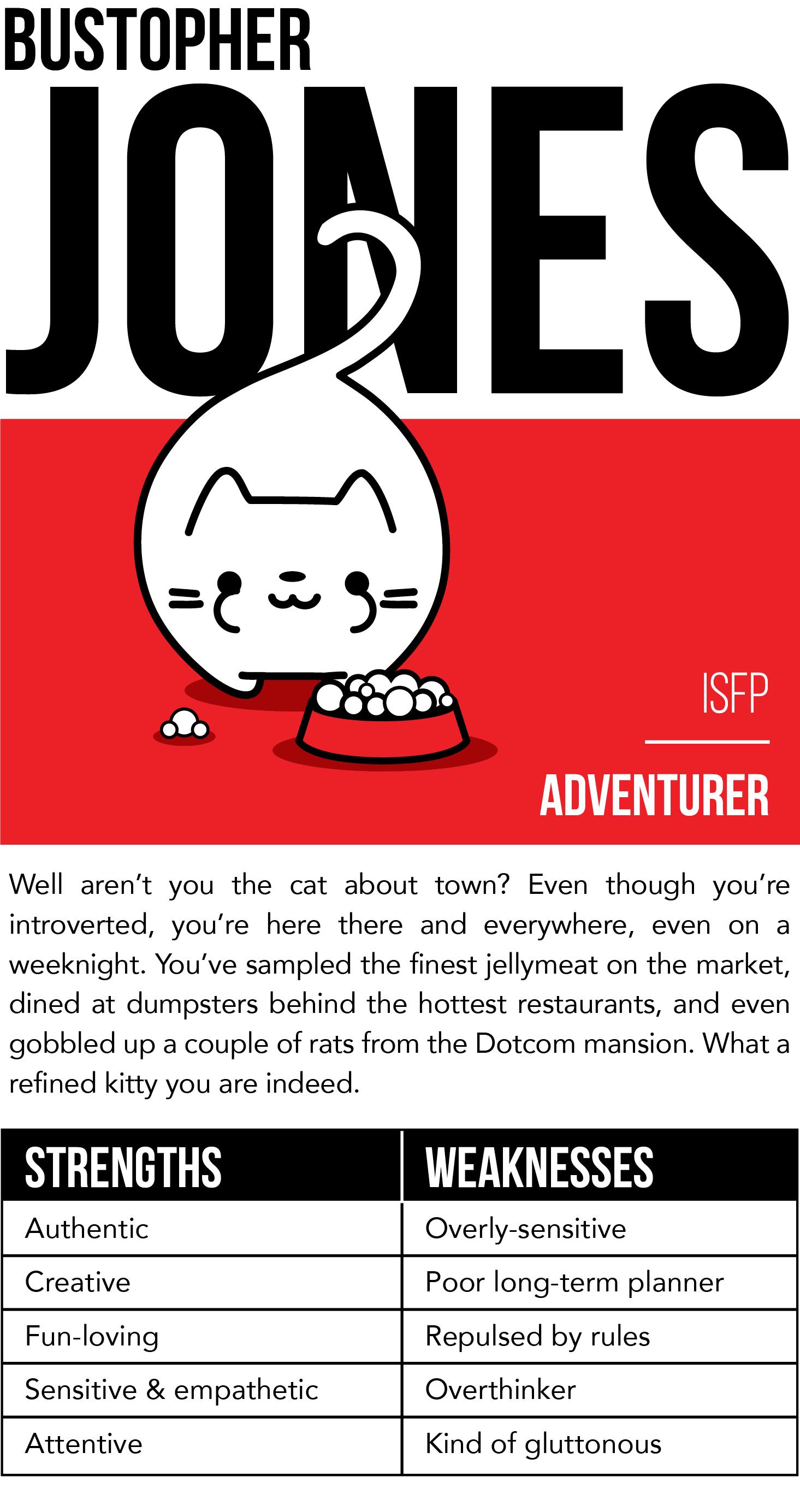 1. Cat_Survey_Bustopher Jones.jpg