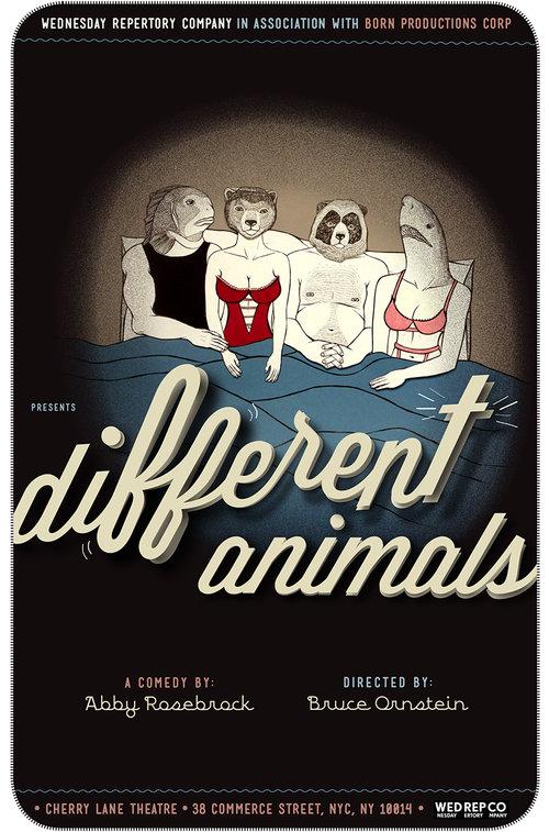 Different Animals Photo Link.jpg