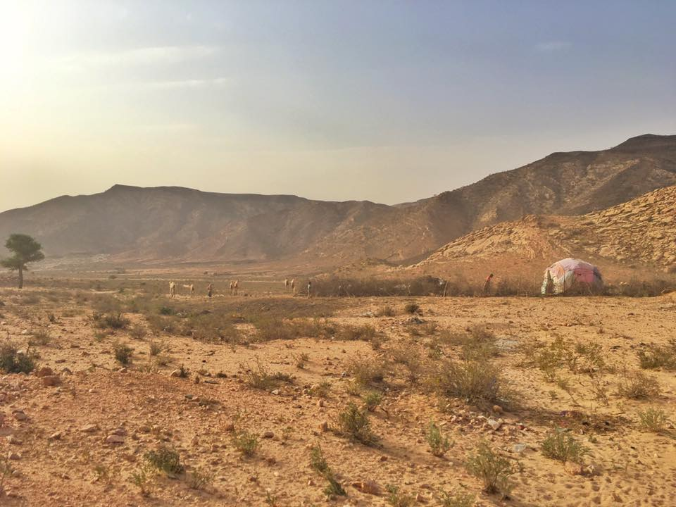 The Border To Somaliland The Danger, The Process And Useful Tips 25.jpg