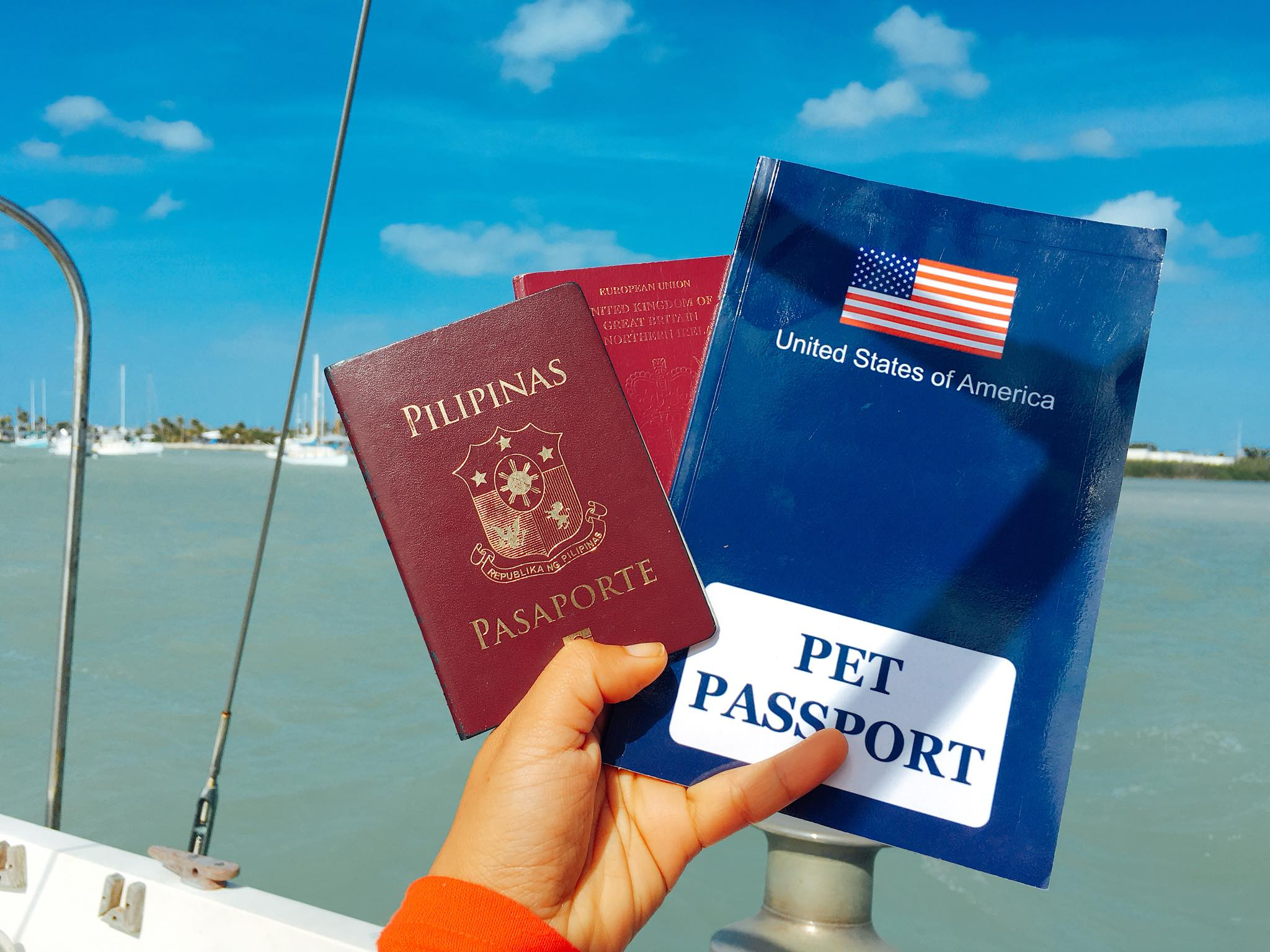 Complete Guide For A J1 US Visa Application-- How You Can Travel And Work InThe States Legally