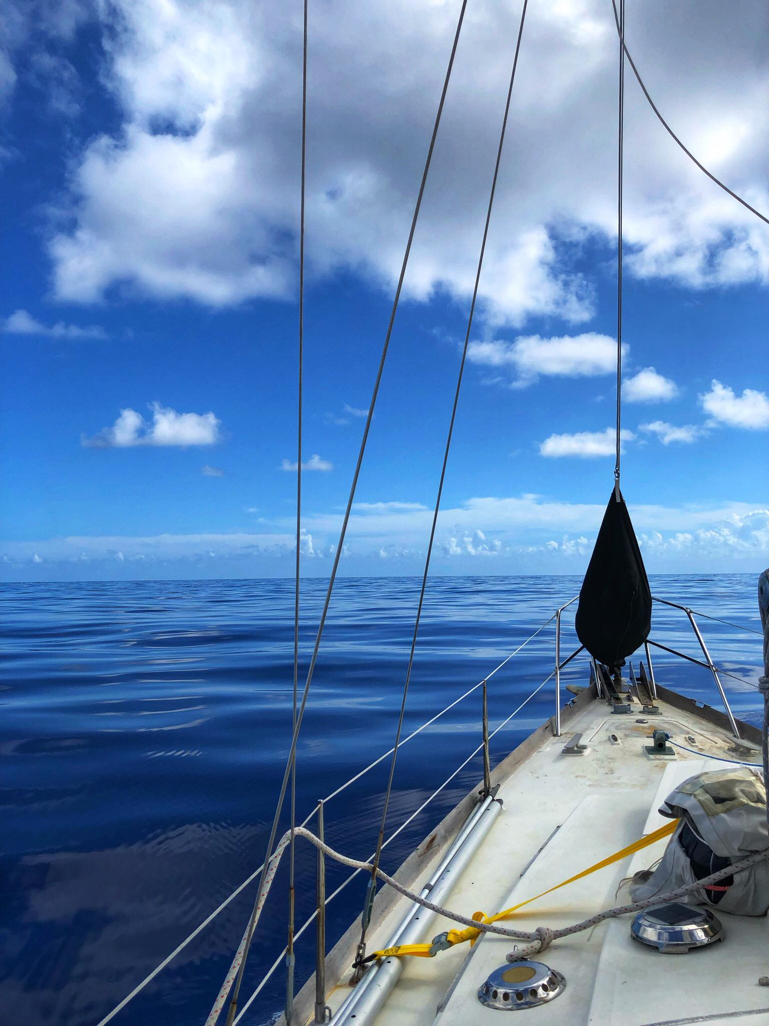 Sailing Life Day 298 Arrived in PUERTO RICO11.jpg