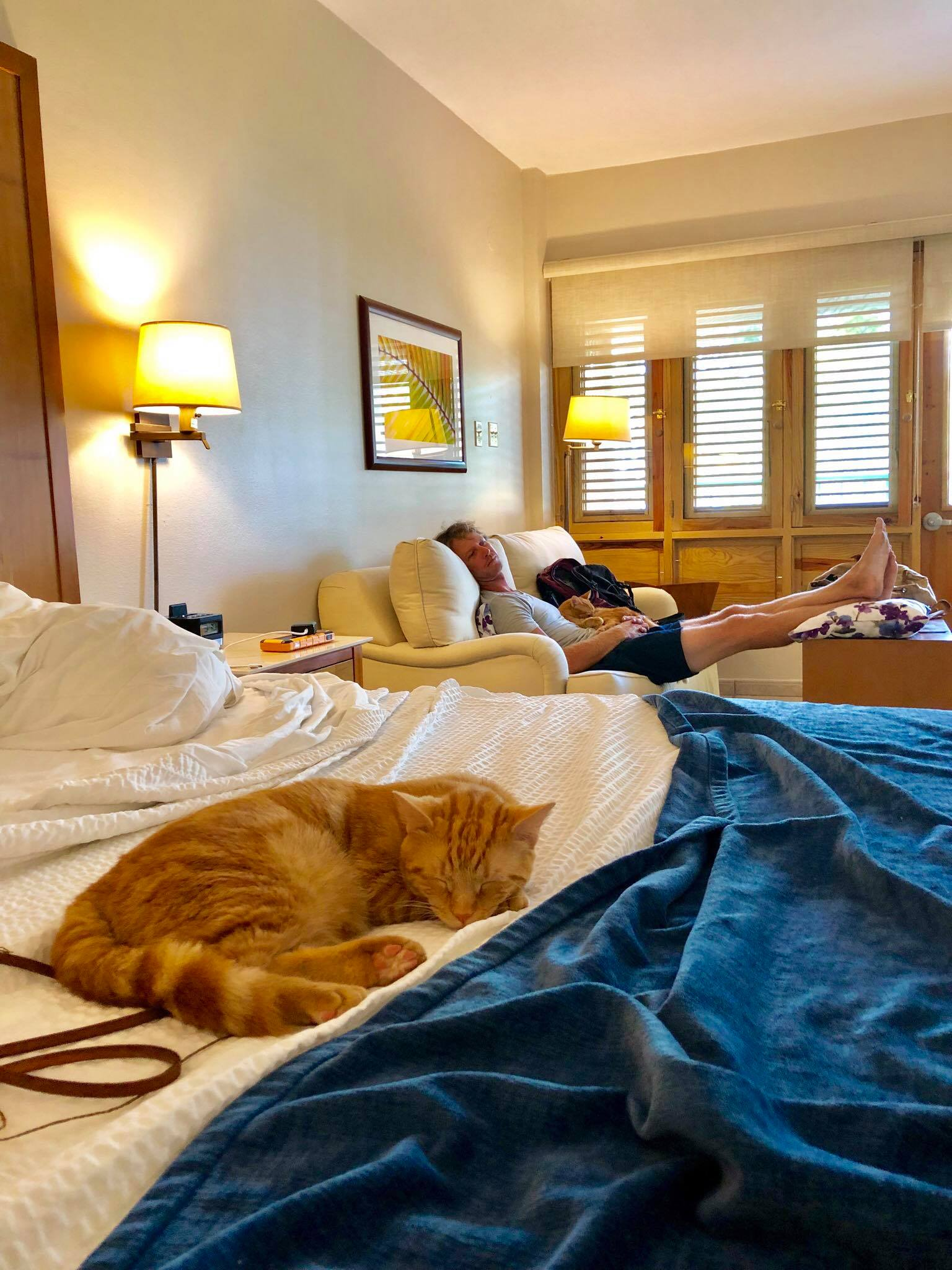 Sailing Life Day 322 Hotel Life of The Sailors Cats - Captain Ahab & Little Zissou's Luxury Staycation1.jpg