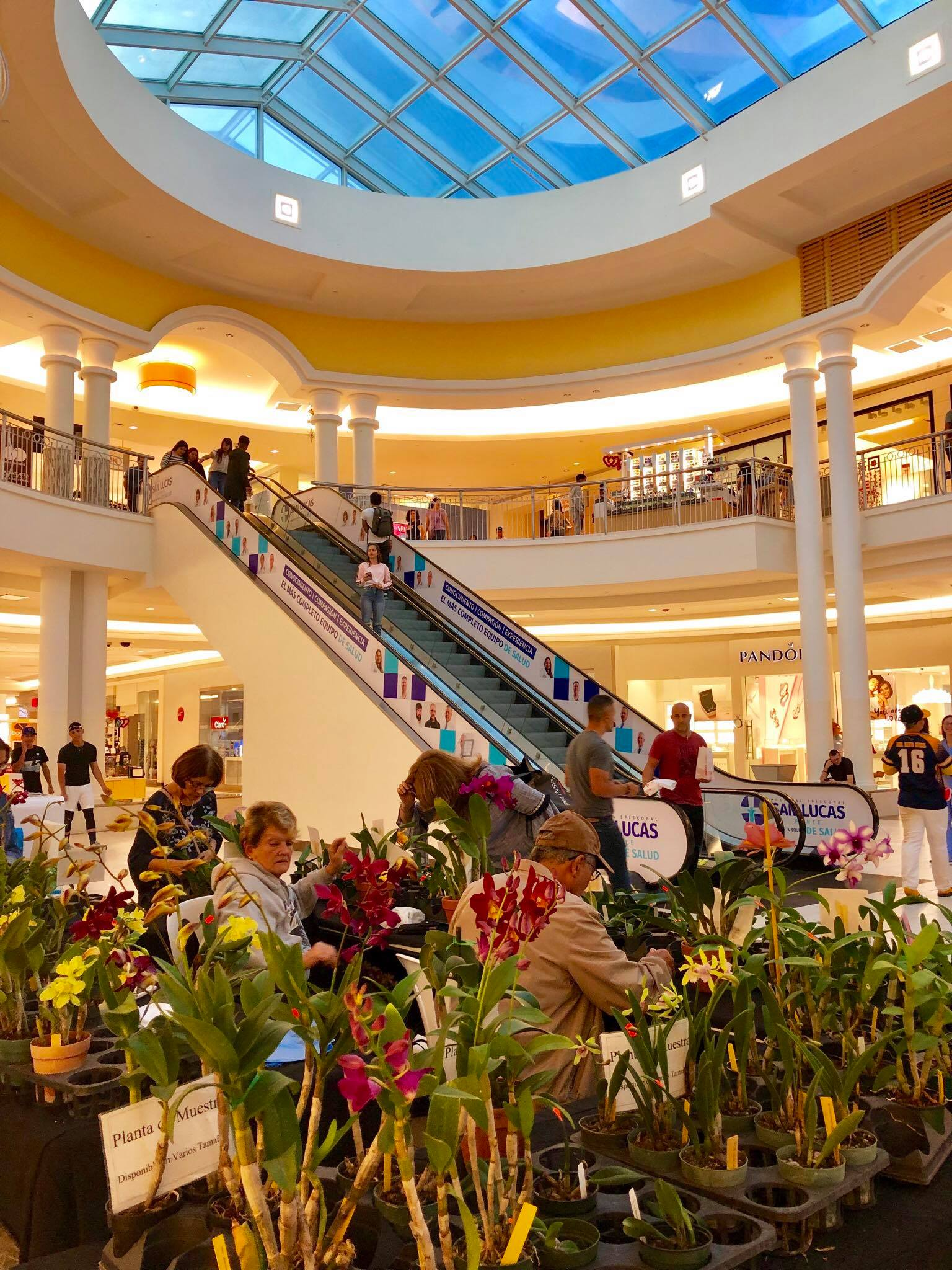 Sailing Life Day 333 We went to the shopping mall - Plaza Caribe in Ponce, Puerto Rico1.jpg
