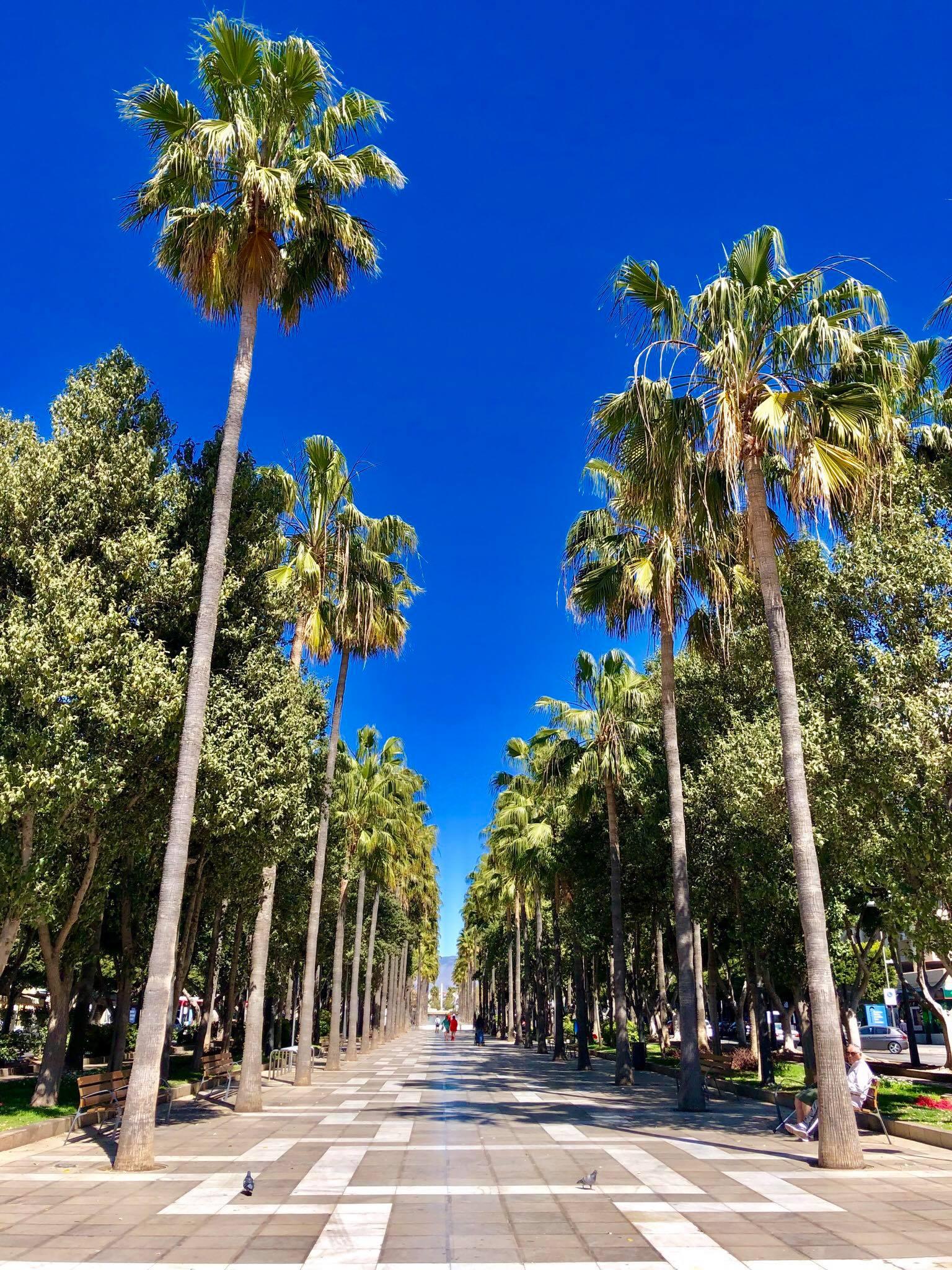 Kach Solo Travels in 2019 Thanks to Cámara de Comercio de Almería4.jpg
