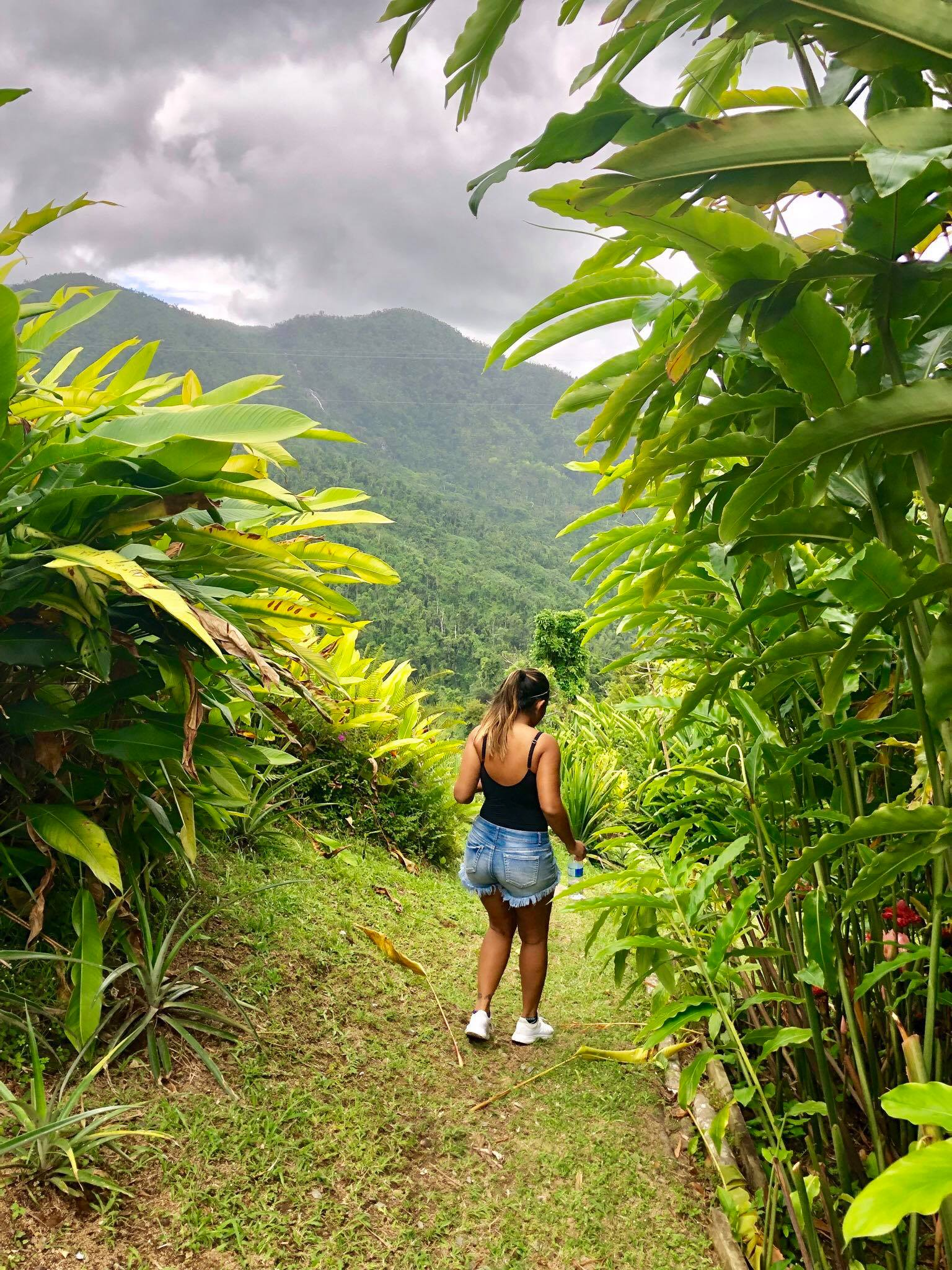 Life On The Road Day 9 Hiking to Cubuy Waterfalls in El Yunque National Park13.jpg