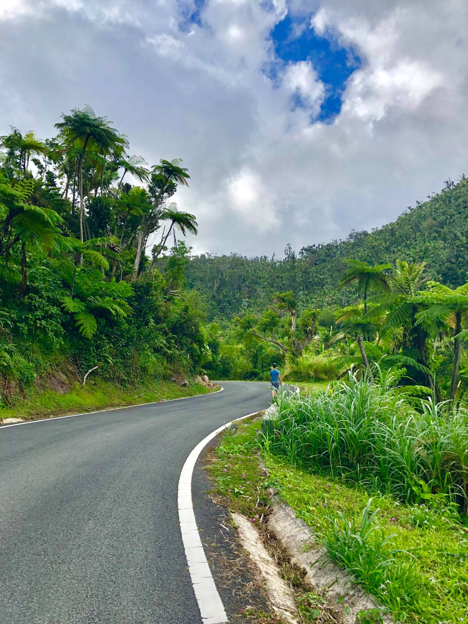 Life On The Road Day 10 Another day hiking in El Yunque National Forest and Eating BBQ at the malecon in Naguabo Promenade2.jpg