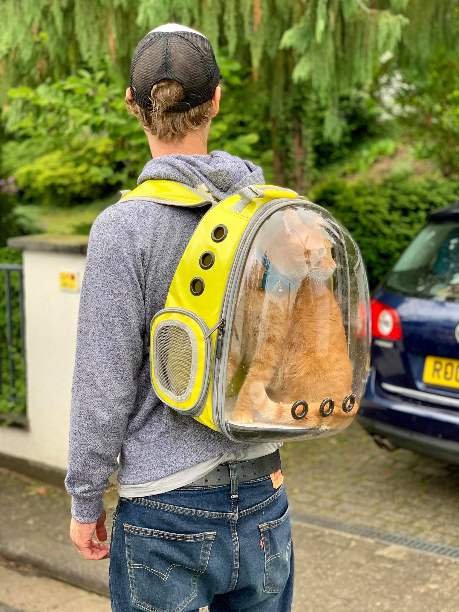 Lollimeow - awesome bag to explore with your cats.jpg
