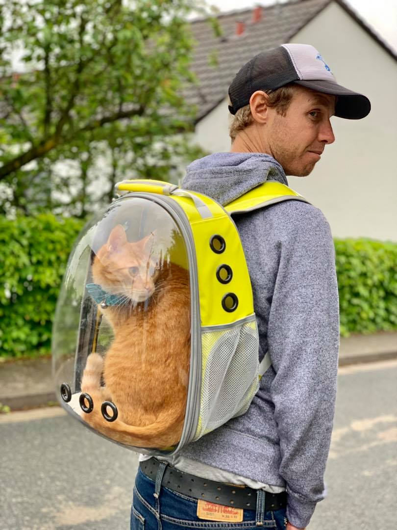 Lollimeow - awesome bag to explore with your cats3.jpg