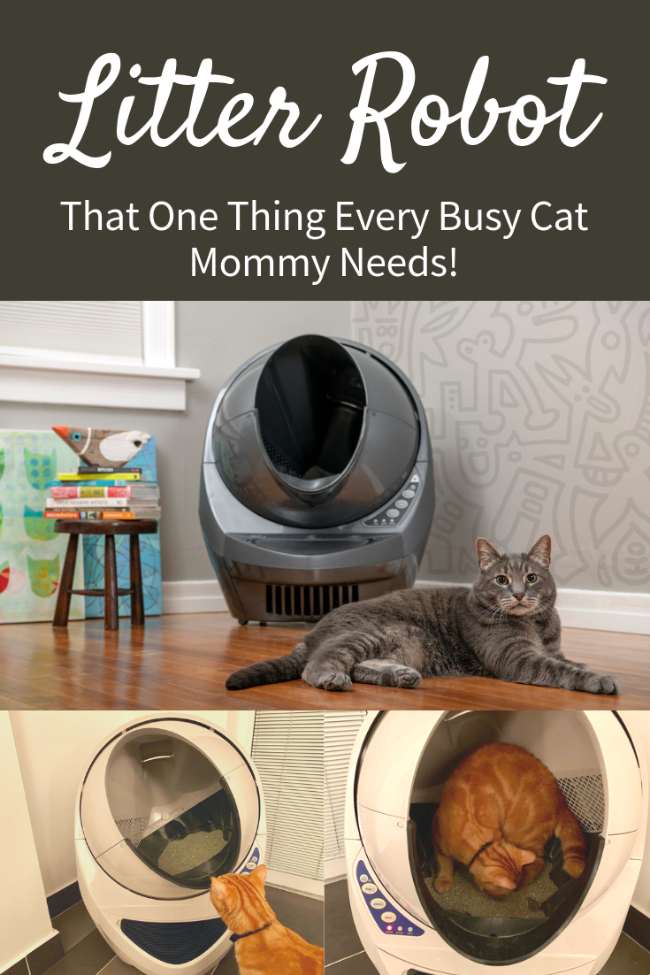 Litter Robot  That One Thing Every Busy Cat Mommy Needs2.png