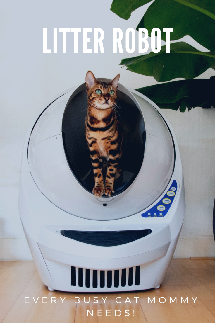 Litter Robot  That One Thing Every Busy Cat Mommy Needs.png