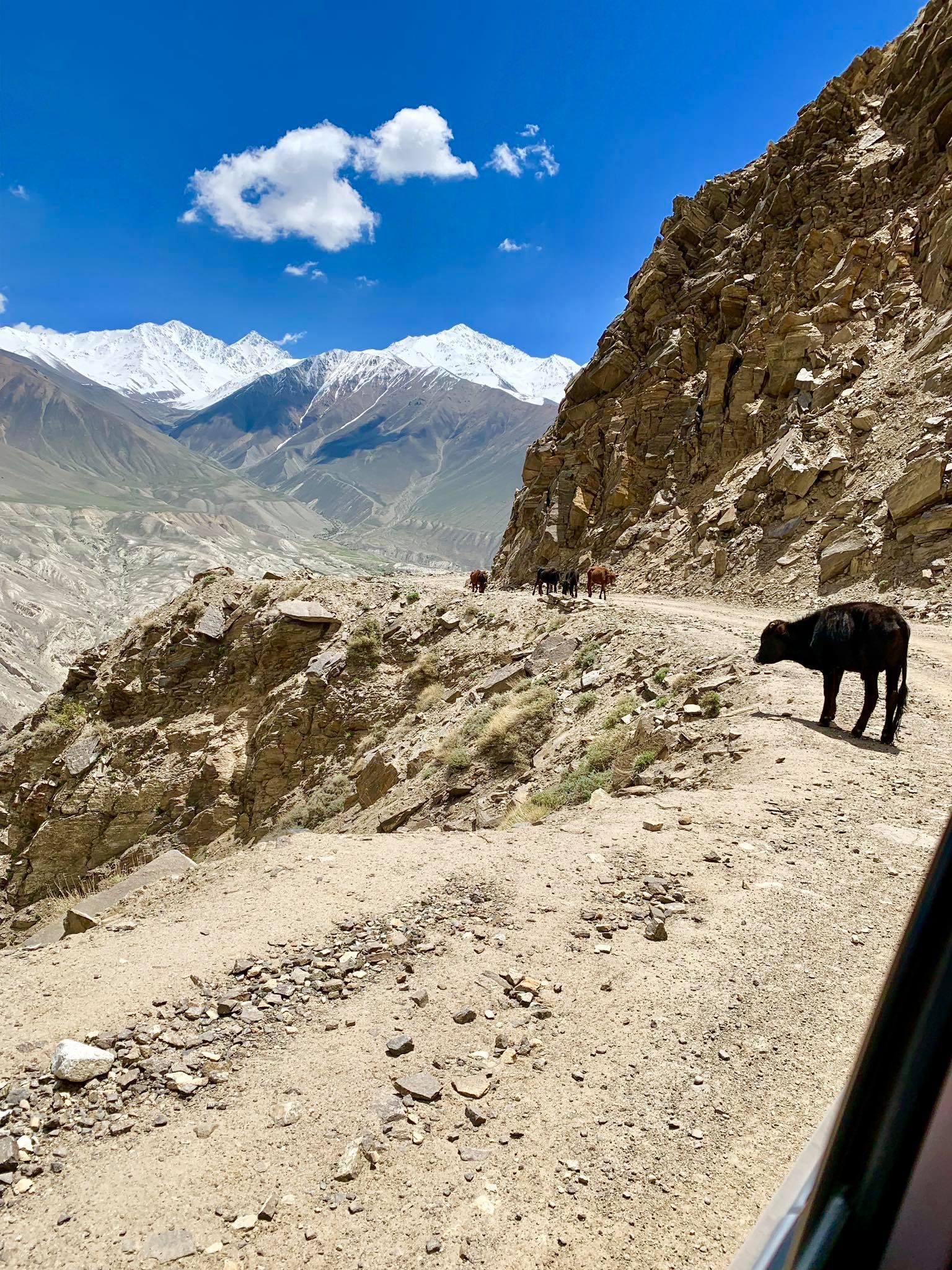Kach Solo Travels in 2019 Homestay at Bulunkul Village13.jpg
