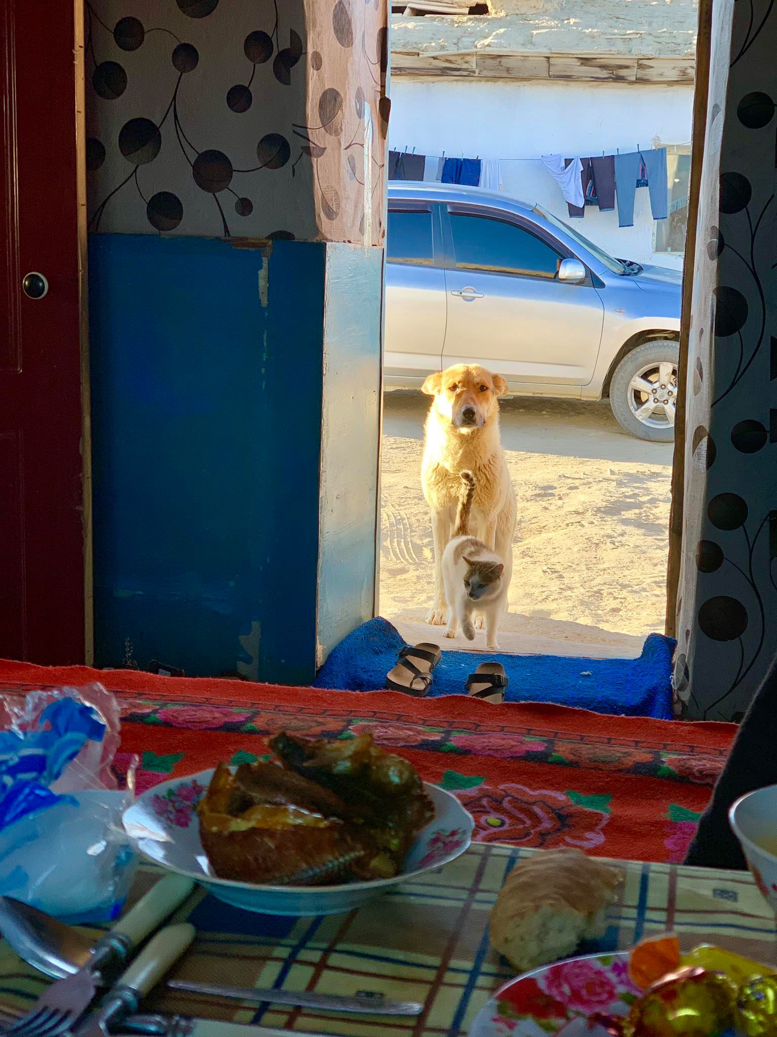Kach Solo Travels in 2019 Homestay at Bulunkul Village33.jpg