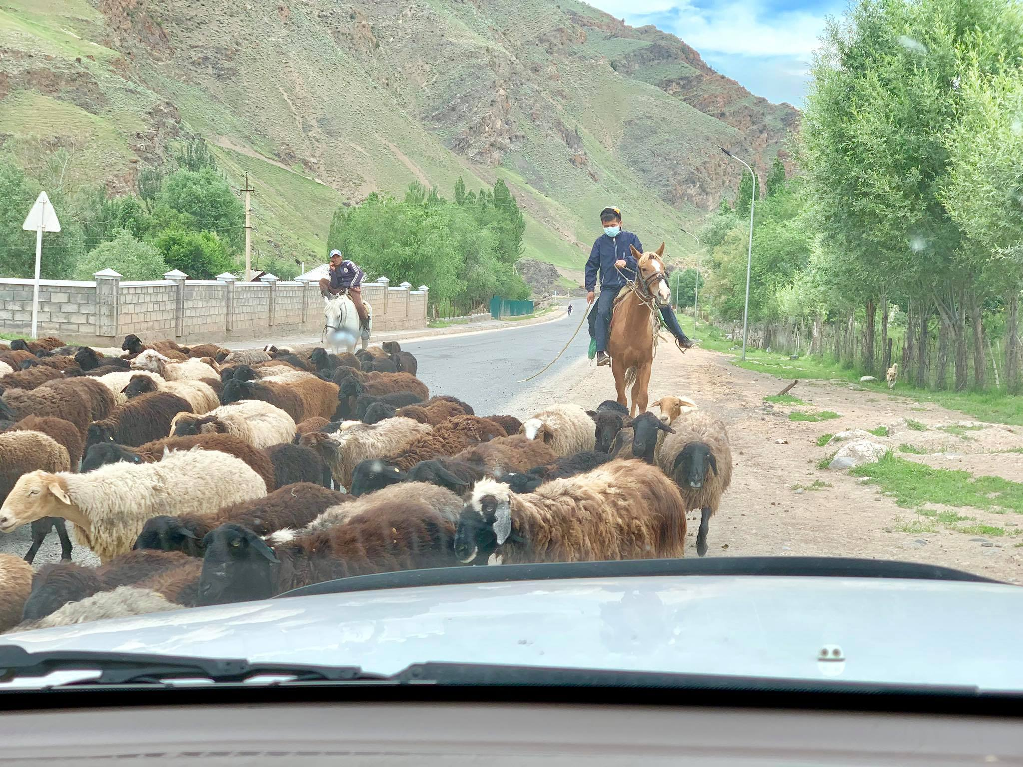 Kach Solo Travels in 2019 Hello from KYRGYZSTAN, my 128th country14.jpg
