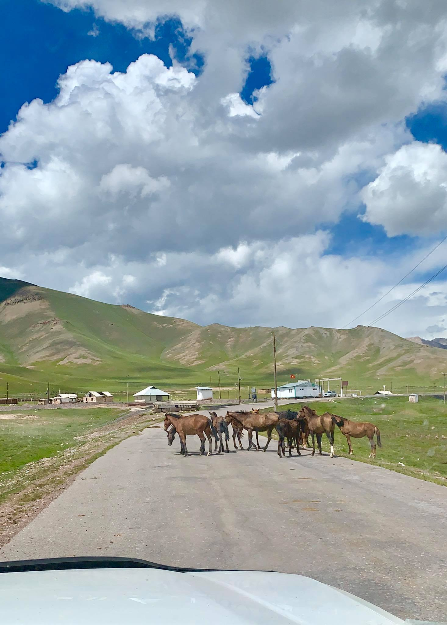 Kach Solo Travels in 2019 Hello from KYRGYZSTAN, my 128th country9.jpg