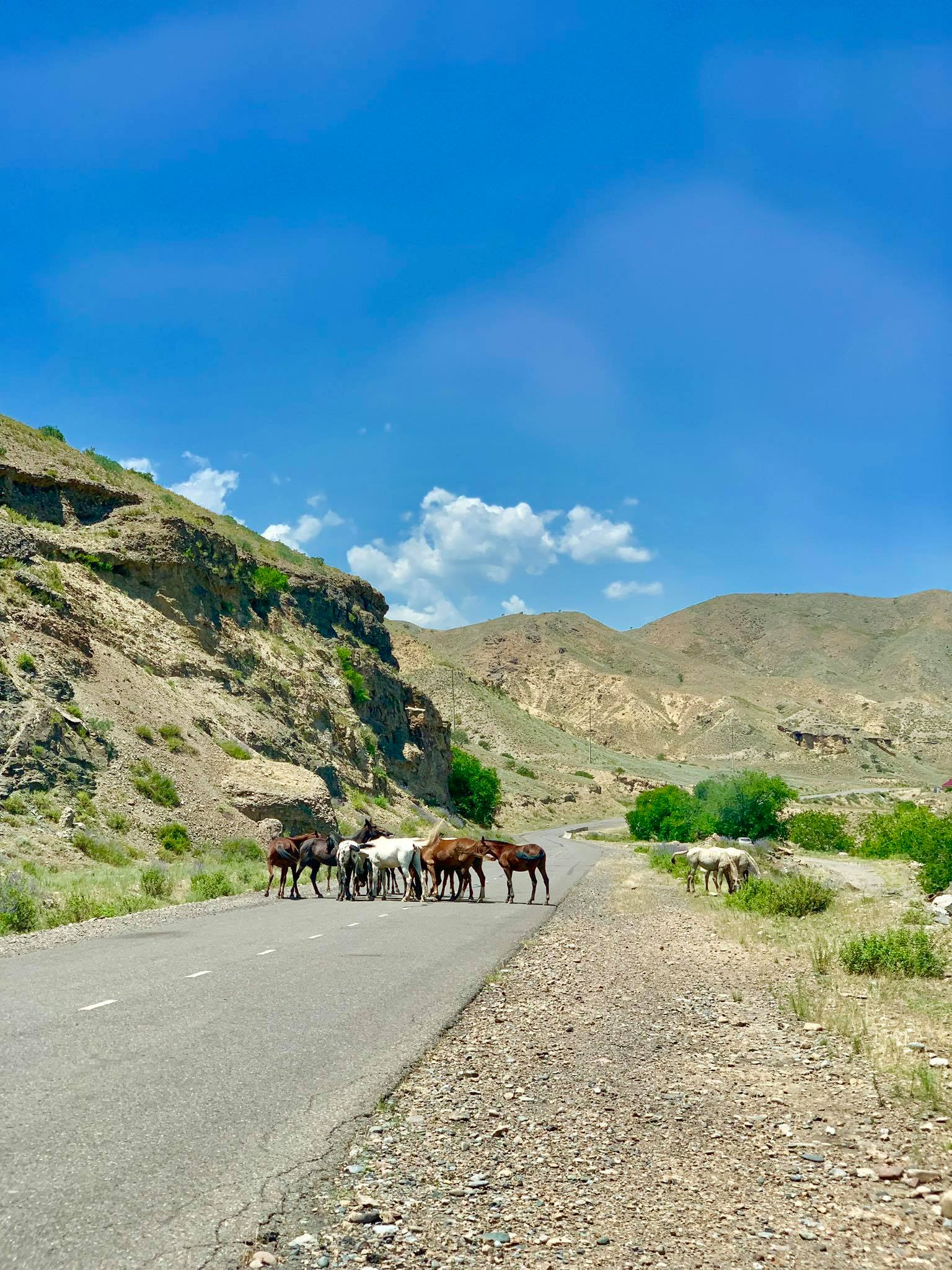 Kach Solo Travels in 2019 Roadtrip to Sary Chelek Lake which is 330 km. from Osh, Kyrgyzstan13.jpg
