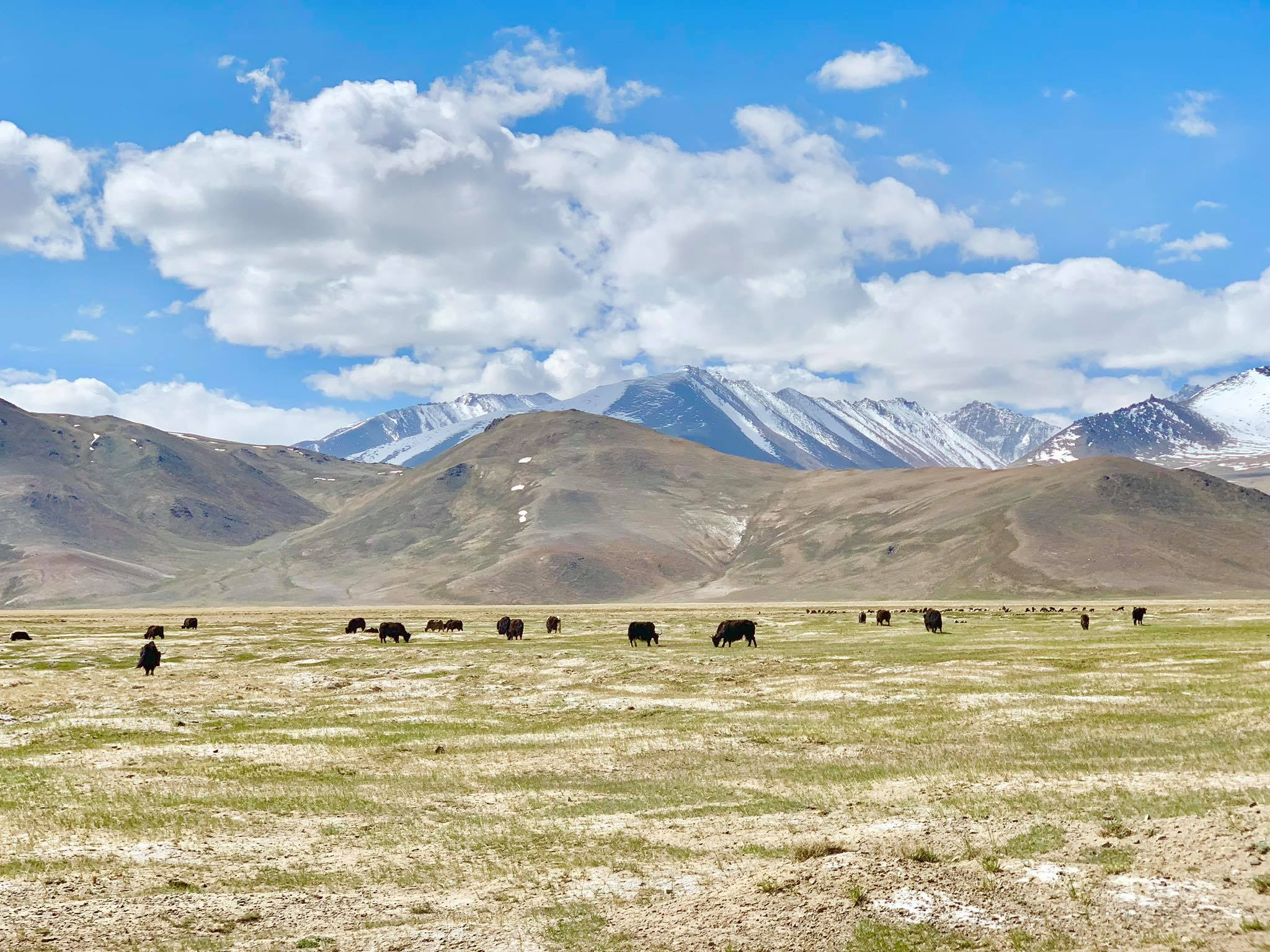 Kach Solo Travels in 2019 Our unexpected last stop during our Pamir Highway Roadtrip3.jpg