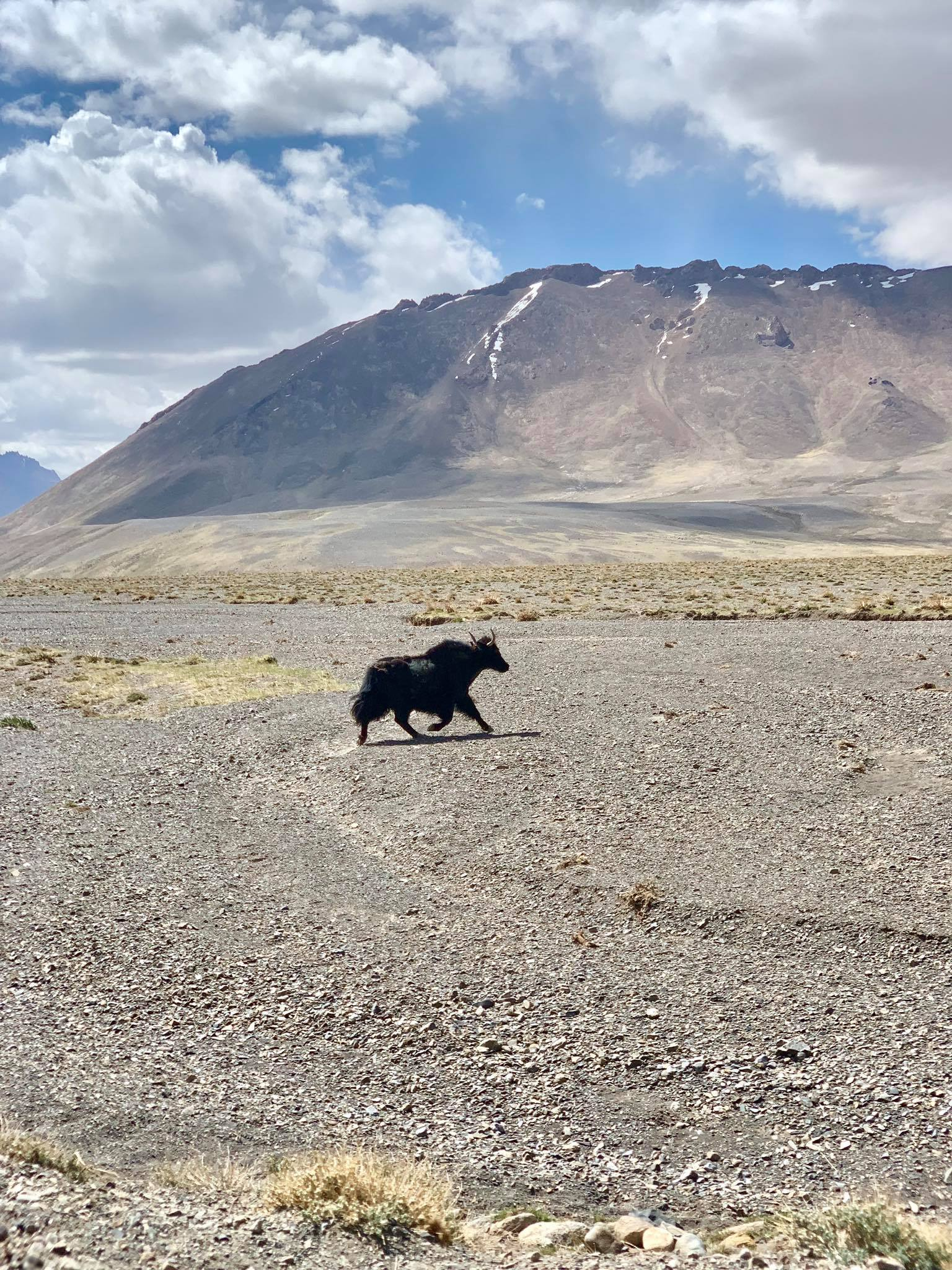 Kach Solo Travels in 2019 Our unexpected last stop during our Pamir Highway Roadtrip4.jpg