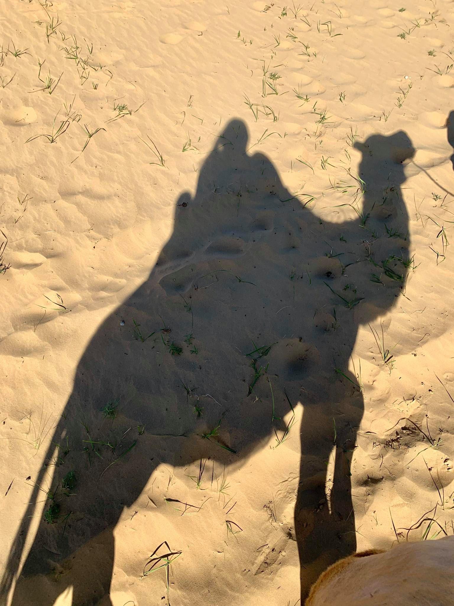 Kach Solo Travels in 2019 Nomadic family in Elsen Tasarkhai4.jpg
