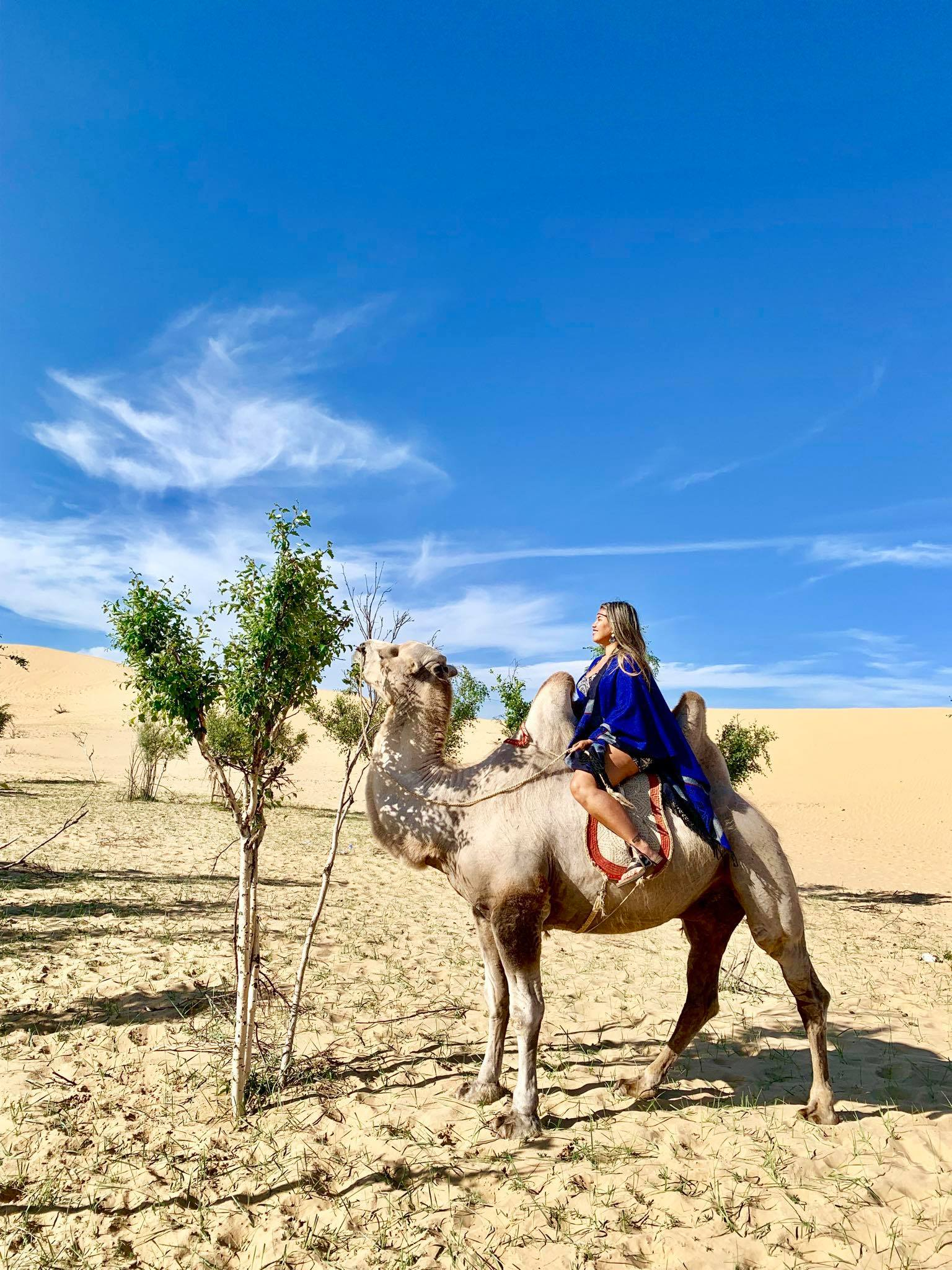 Kach Solo Travels in 2019 Nomadic family in Elsen Tasarkhai10.jpg