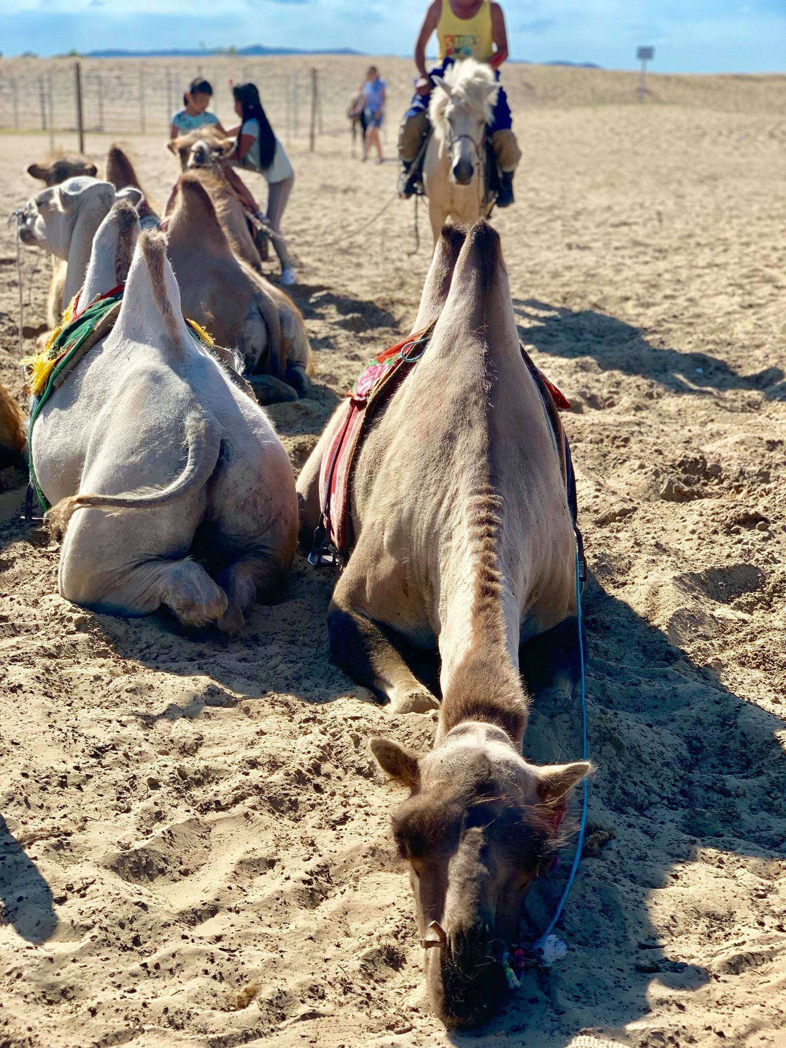 Kach Solo Travels in 2019 Nomadic family in Elsen Tasarkhai16.jpg