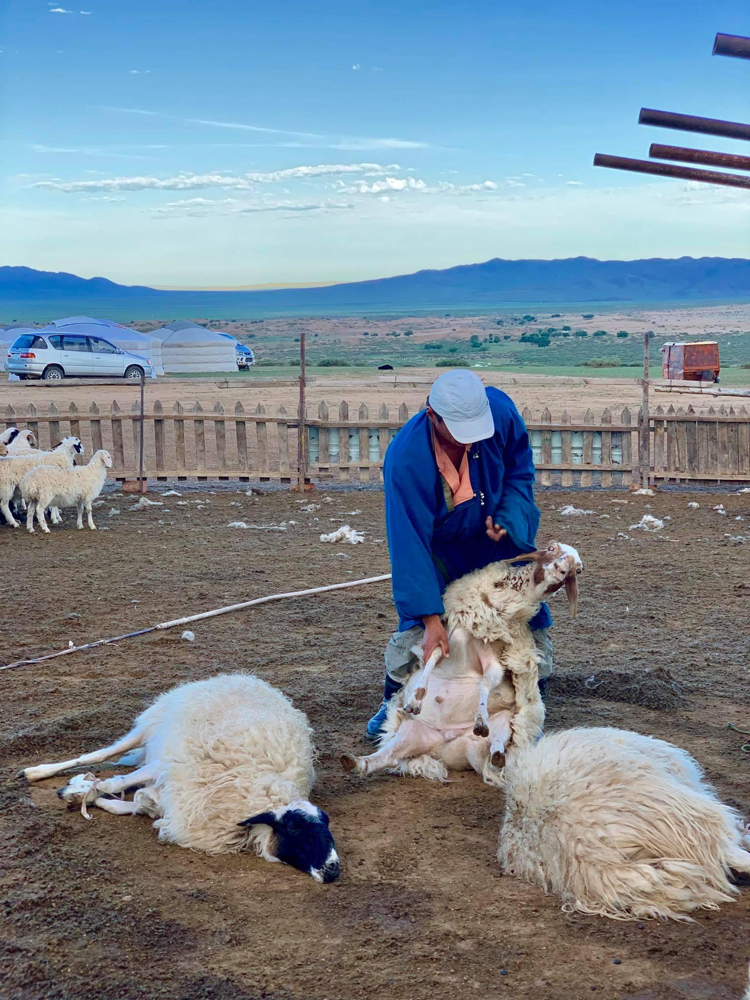 Kach Solo Travels in 2019 Nomadic family in Elsen Tasarkhai23.jpg