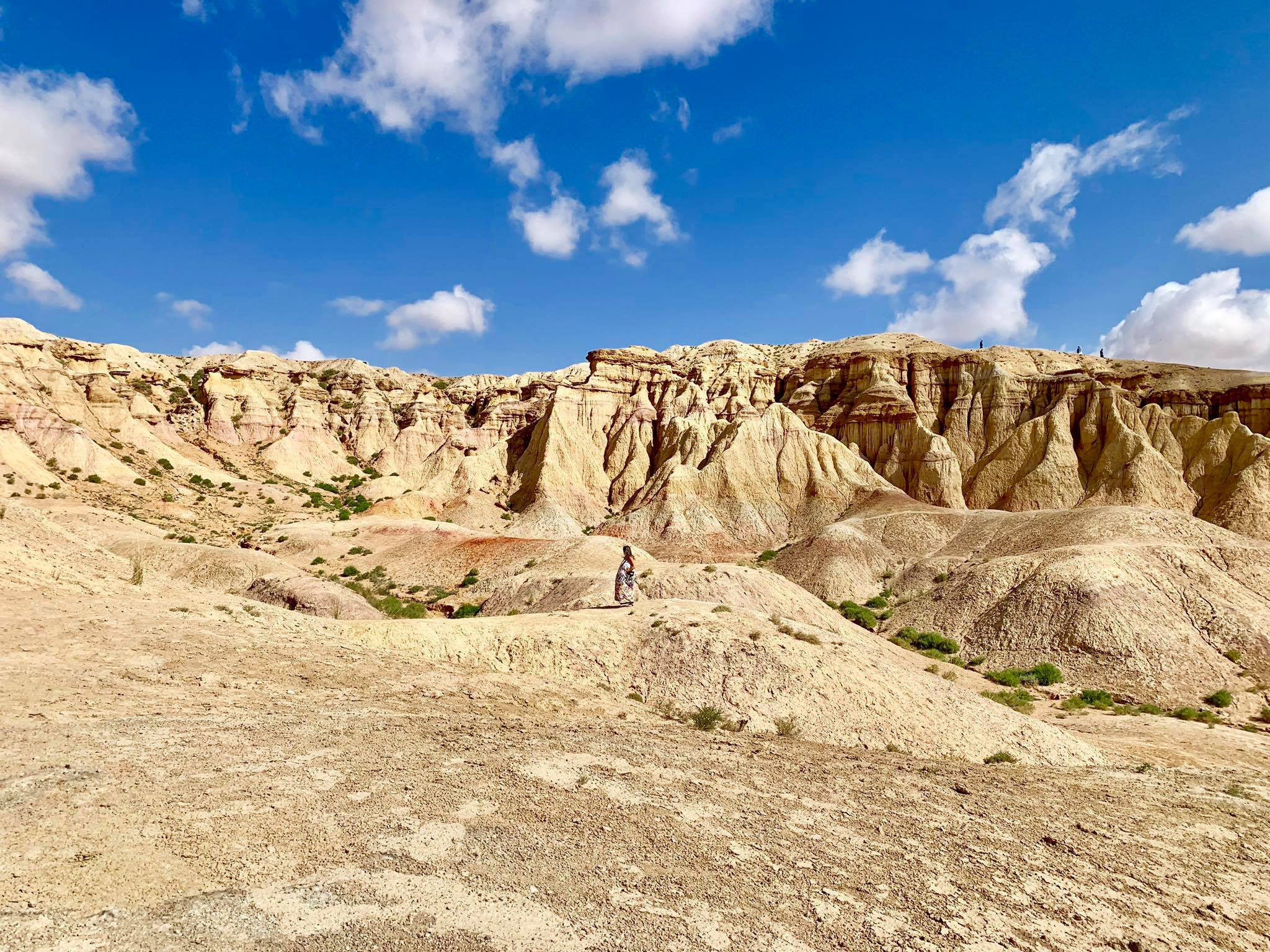 Kach Solo Travels in 2019 Gobi desert with Vast Steppe Mongolia!16.jpg