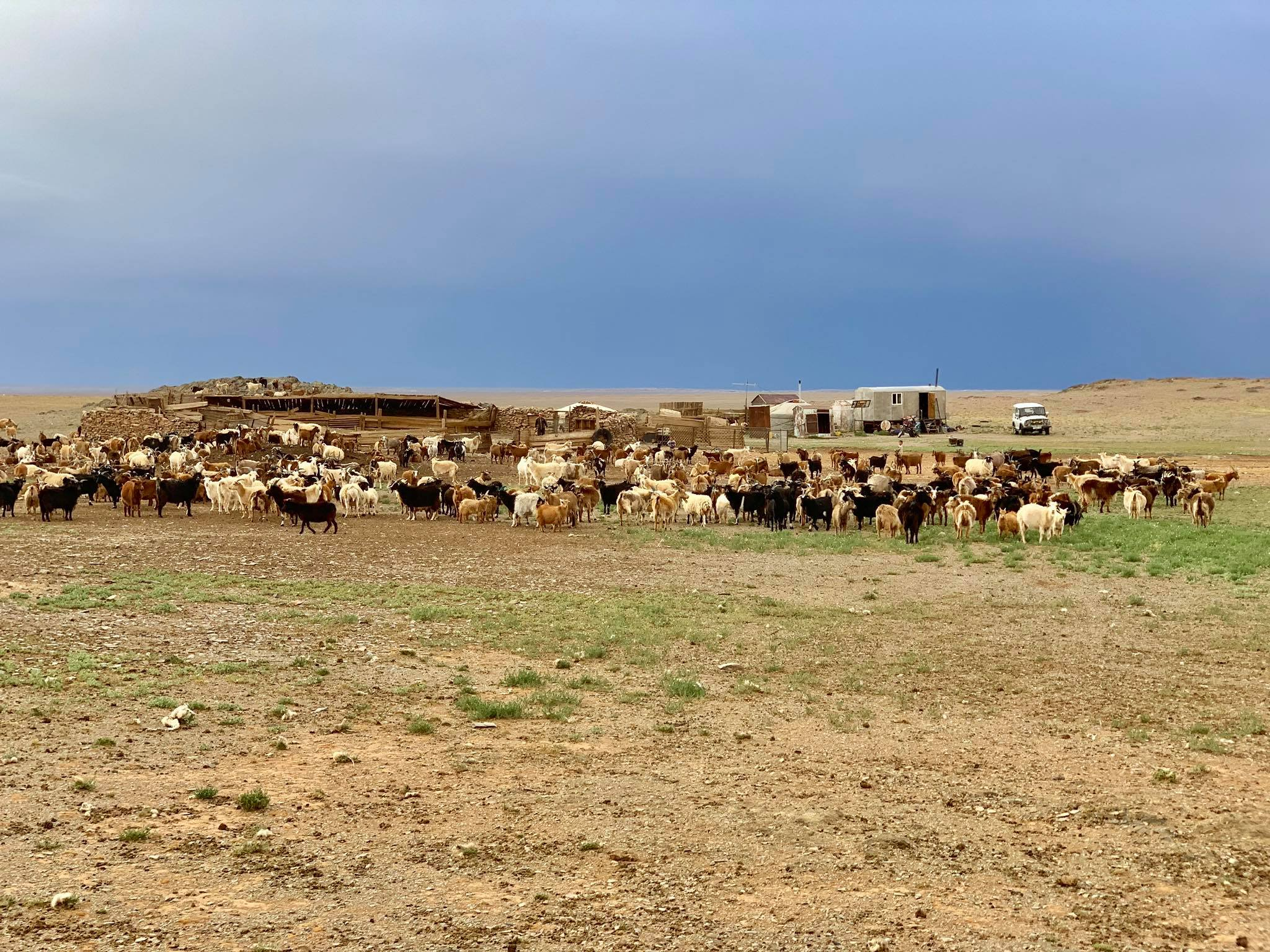 Kach Solo Travels in 2019 Gobi desert with Vast Steppe Mongolia!17.jpg