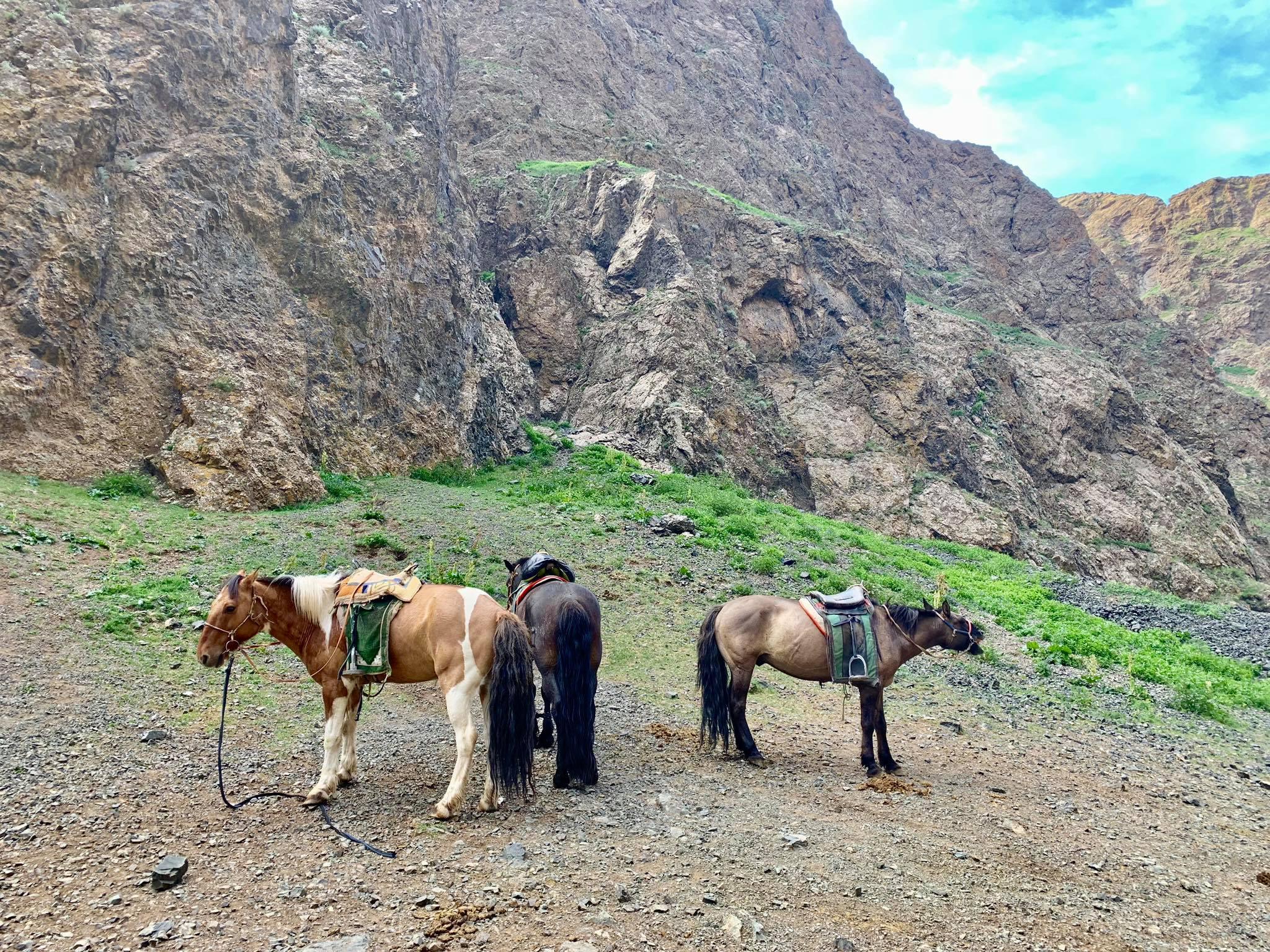Kach Solo Travels in 2019 Horseback riding trip to the Gobi Gurvan Saikhan National Park19.jpg