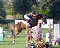 osilvis_jumping5.jpg
