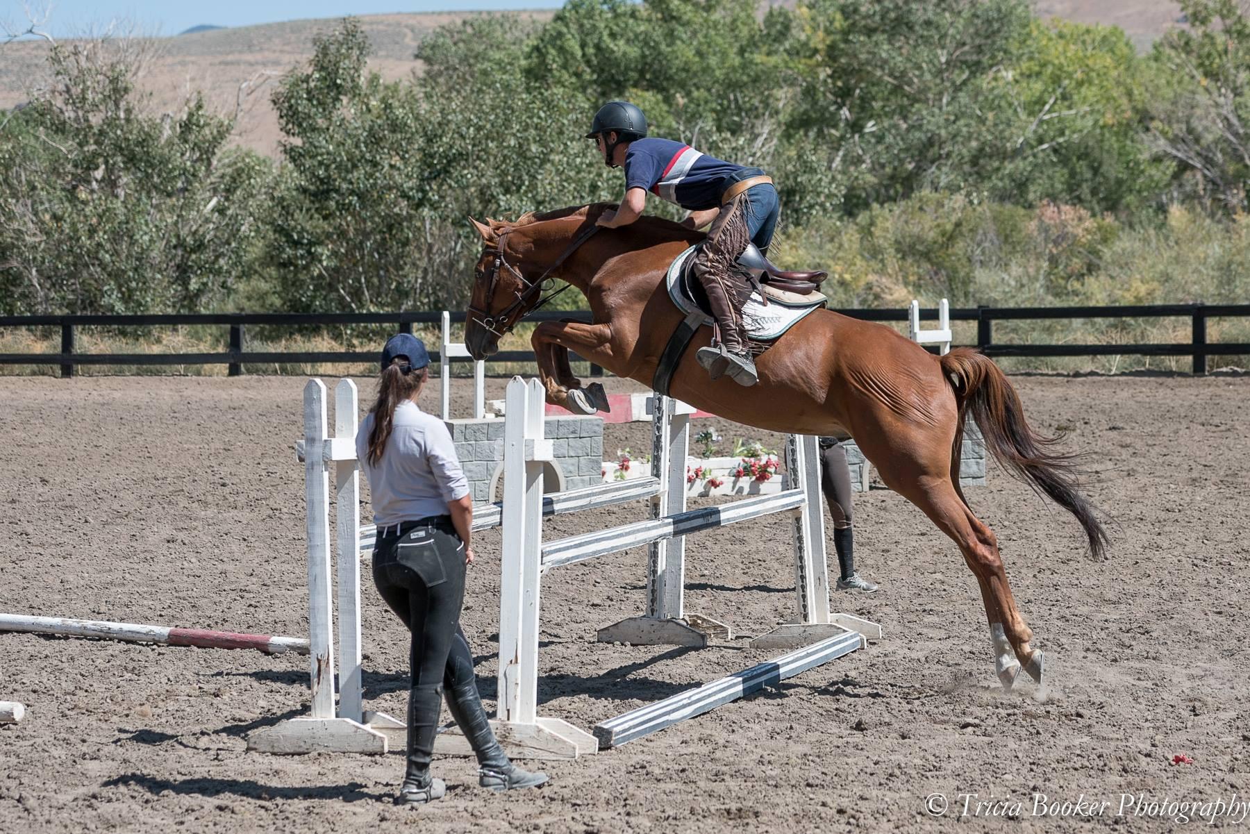Maplewood's Horse Industry Training Program