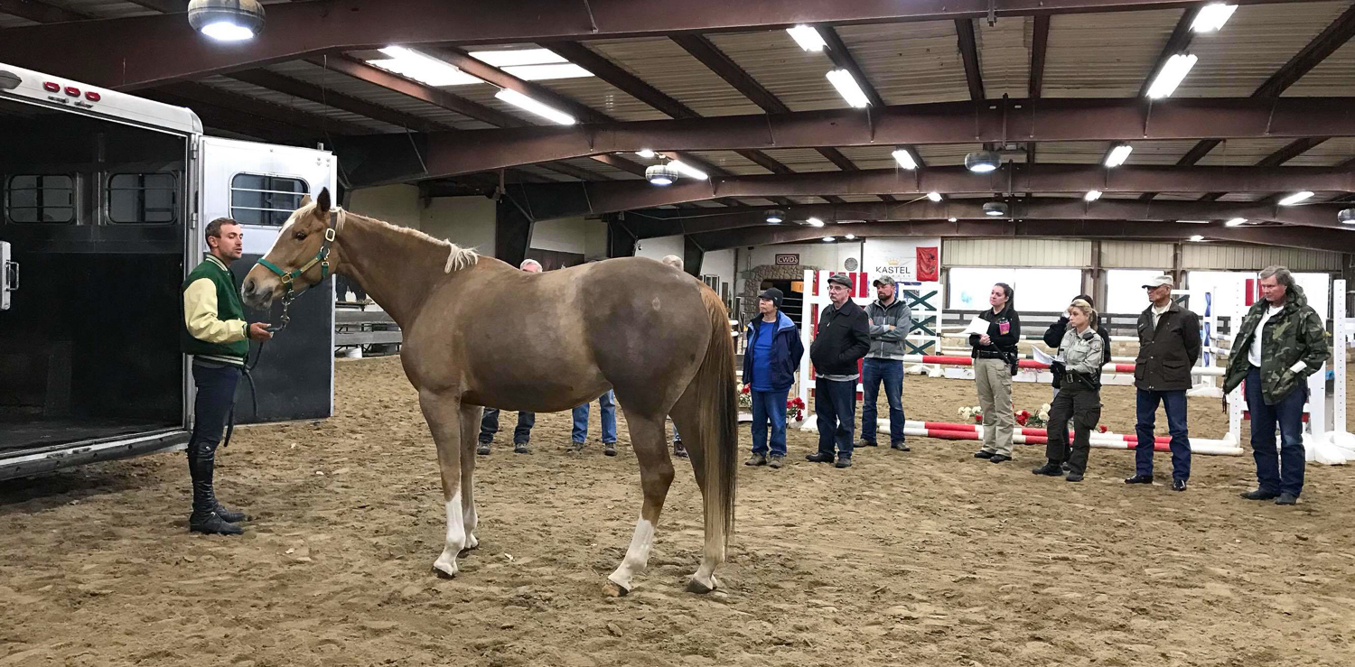 First responders learned how to safely load a horse into a trailer.