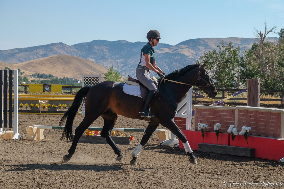 Julie Winkel and Stallone at the Young Horse Trainer School