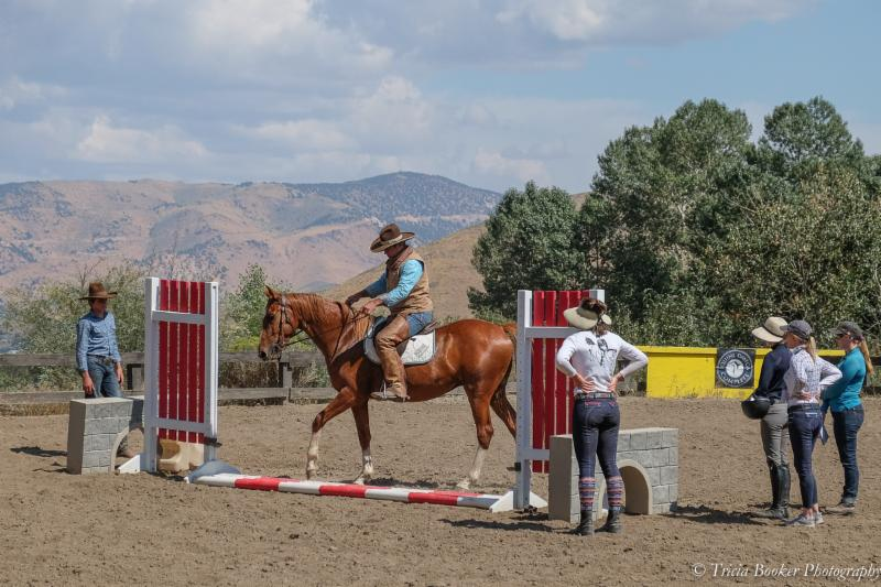 Clinician Jose Alejos teaches and trains during Young Horse Trainer School.