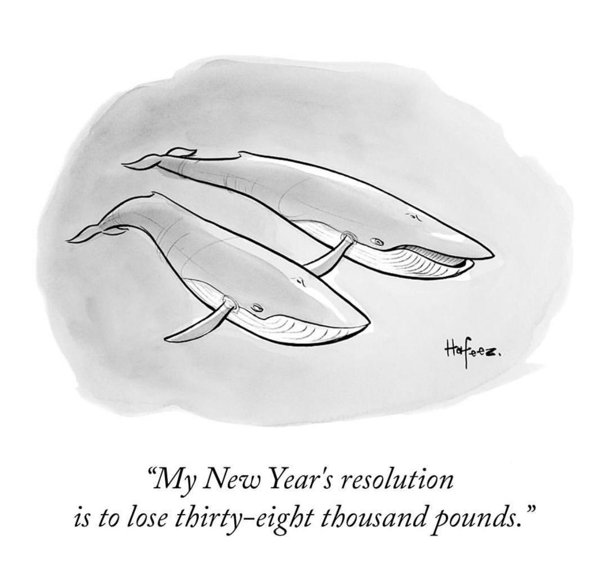 Source  The New Yorker Cartoons , Kaaram Hafeez, 2015