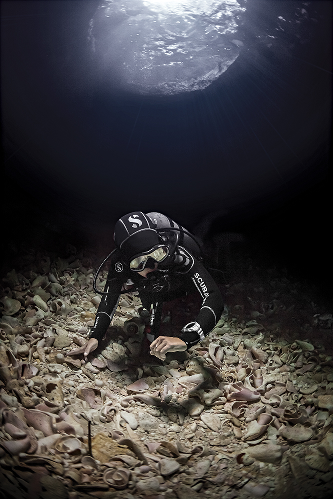 TECHNICAL DIVING & REBREATHERS