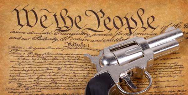 firearms_law_internal2.jpg