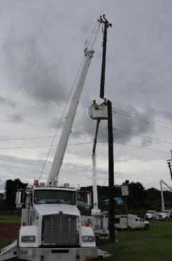 copy IMG_0395 crows nest cut pole2.JPG