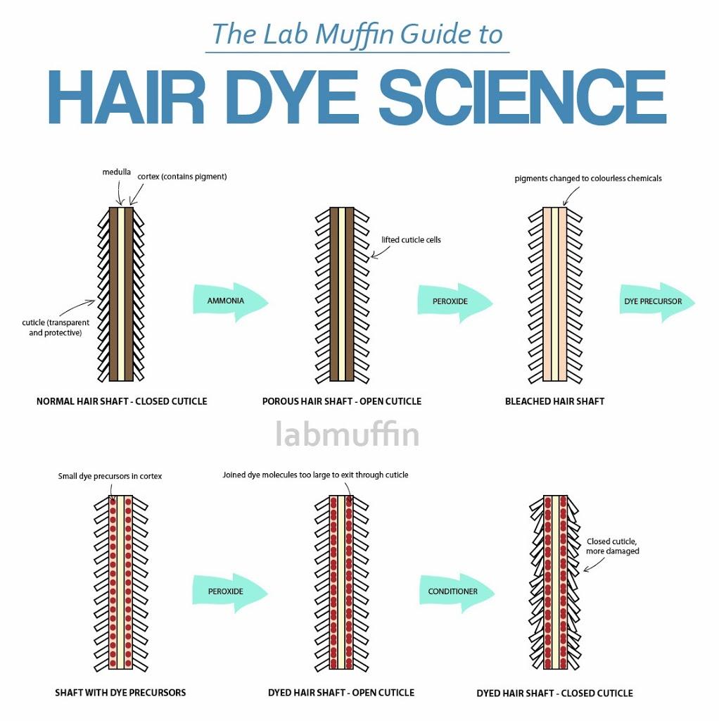 hair-dye-science