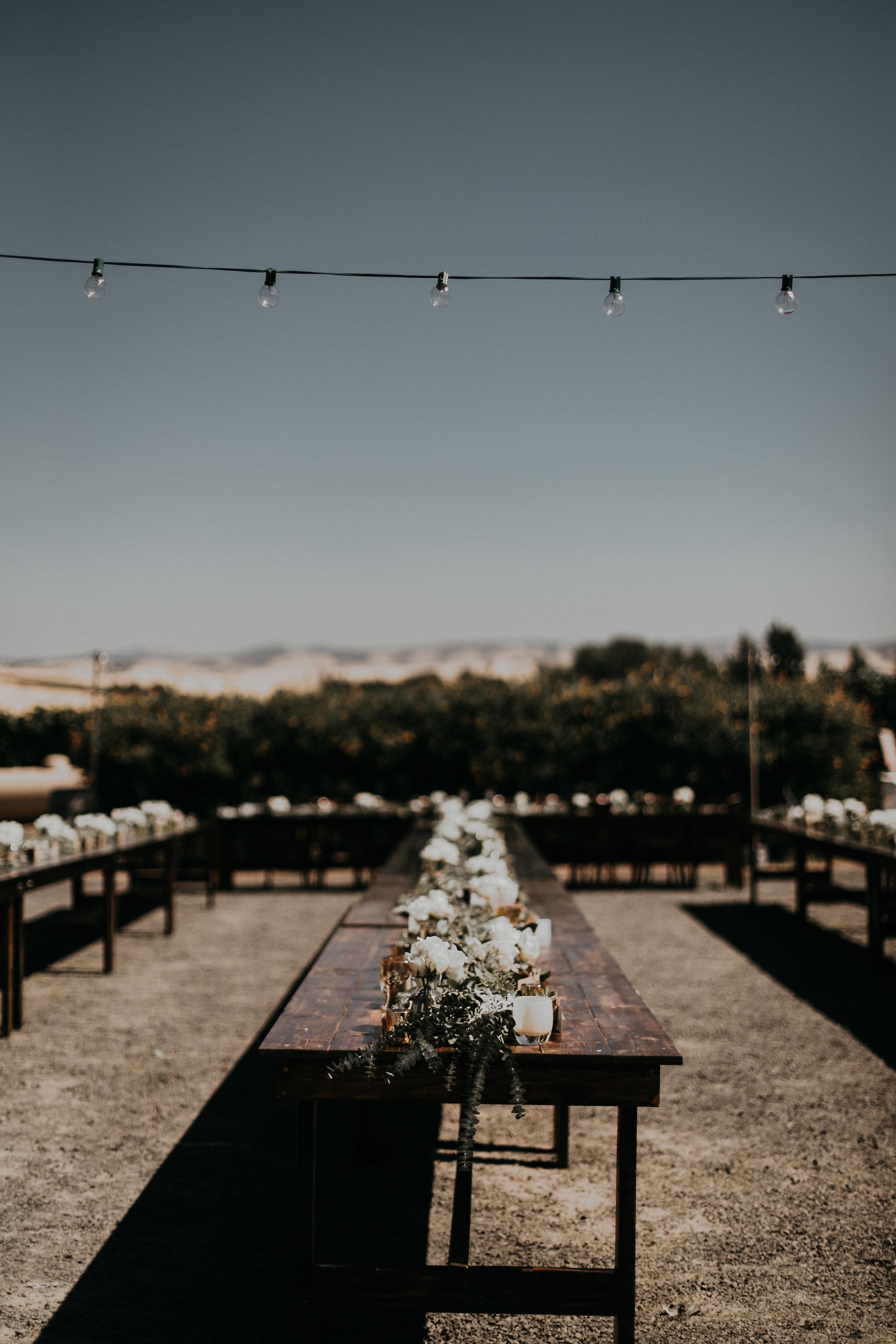 Ashley_Craig_Amourice_Vinyard_Wedding-247.jpg