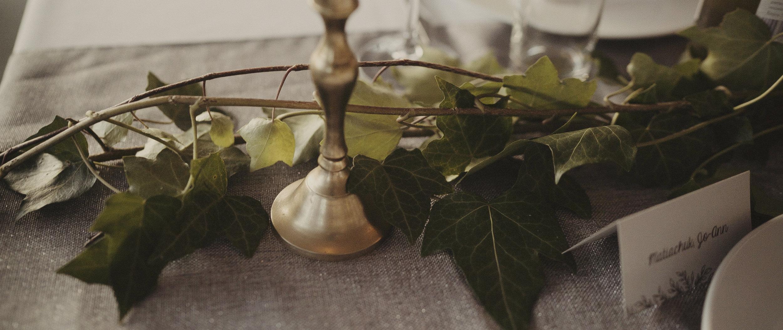 Bodega Ridge Resort Wedding_-3.jpg